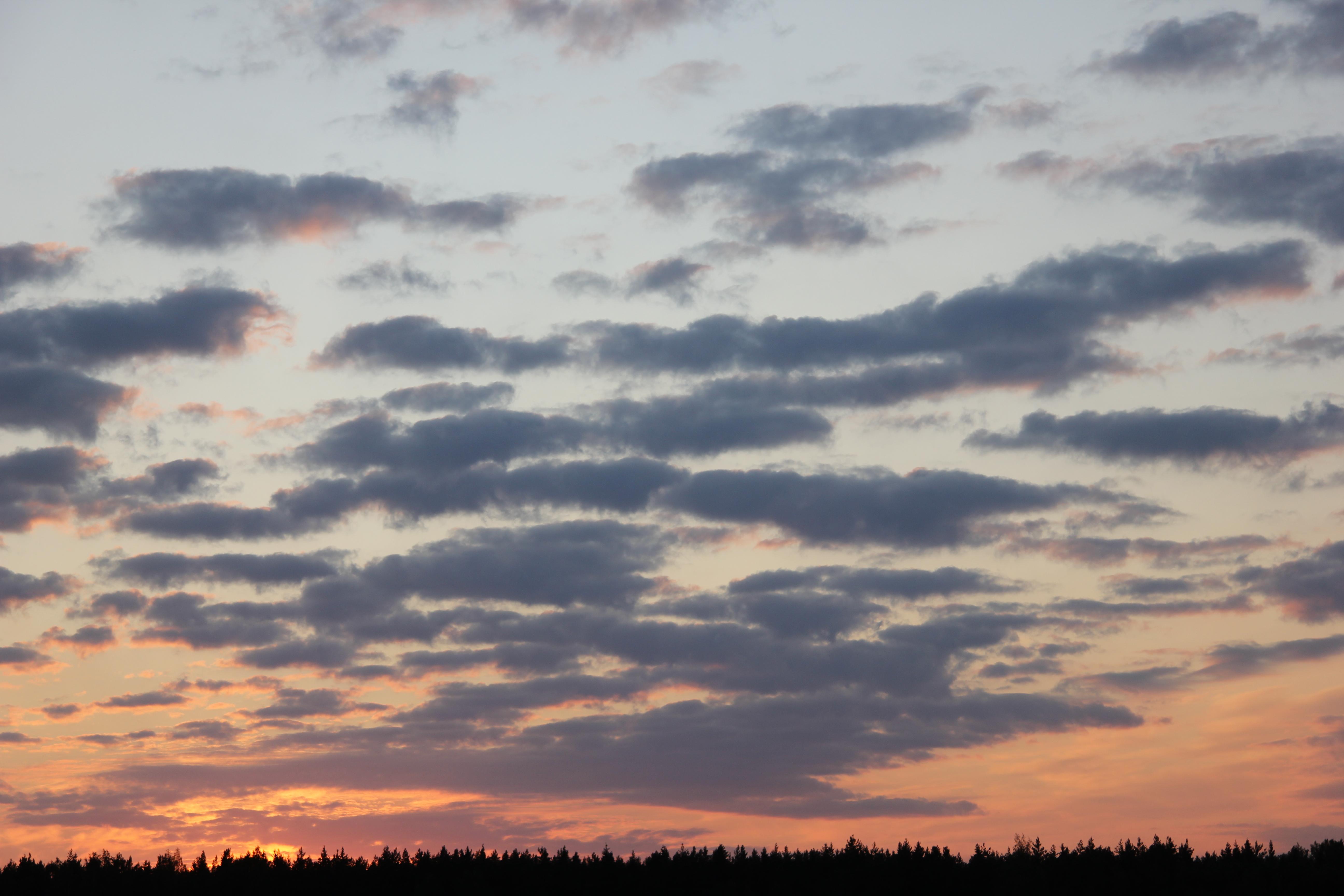 небо после захода солнца (32)