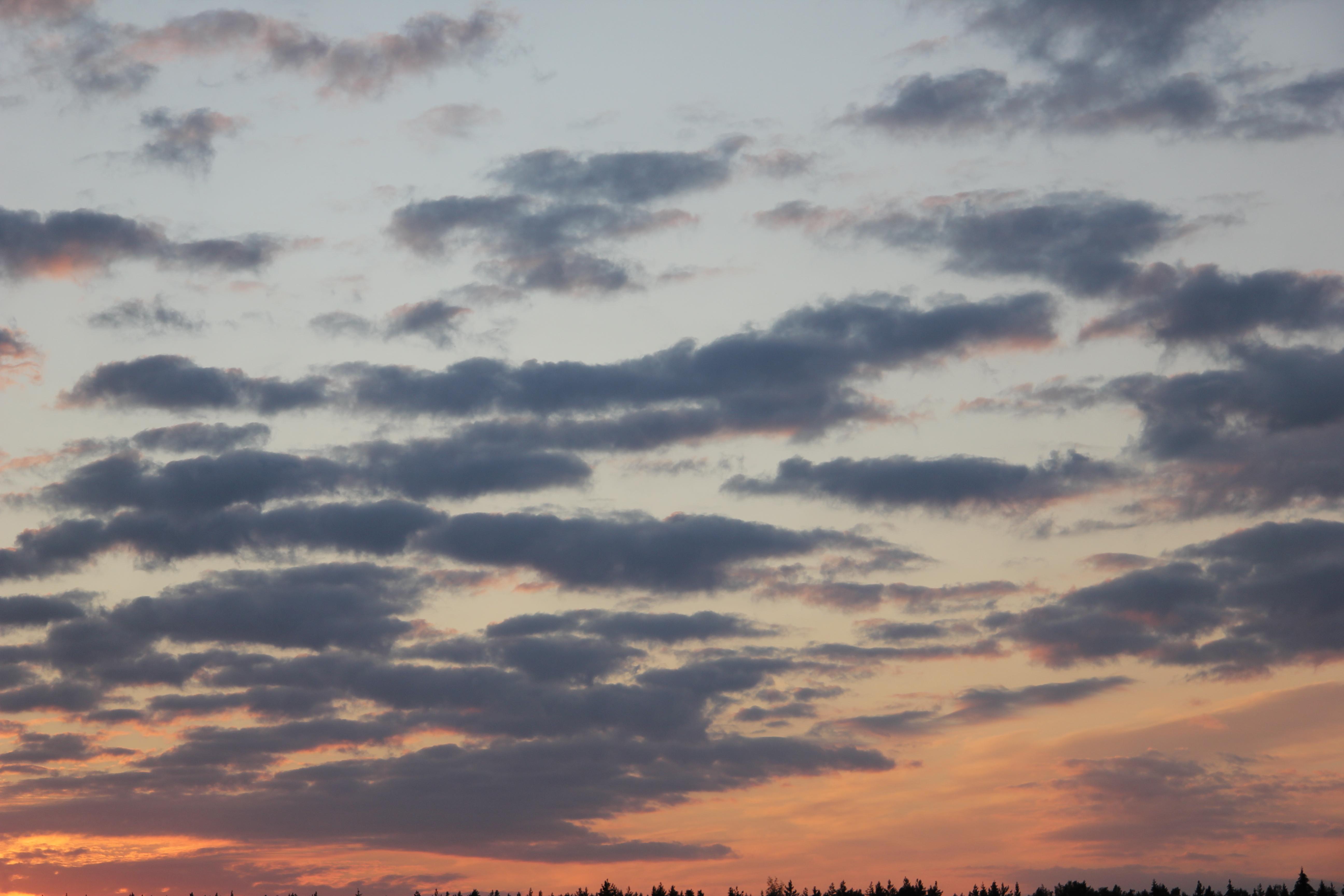 небо после захода солнца (33)