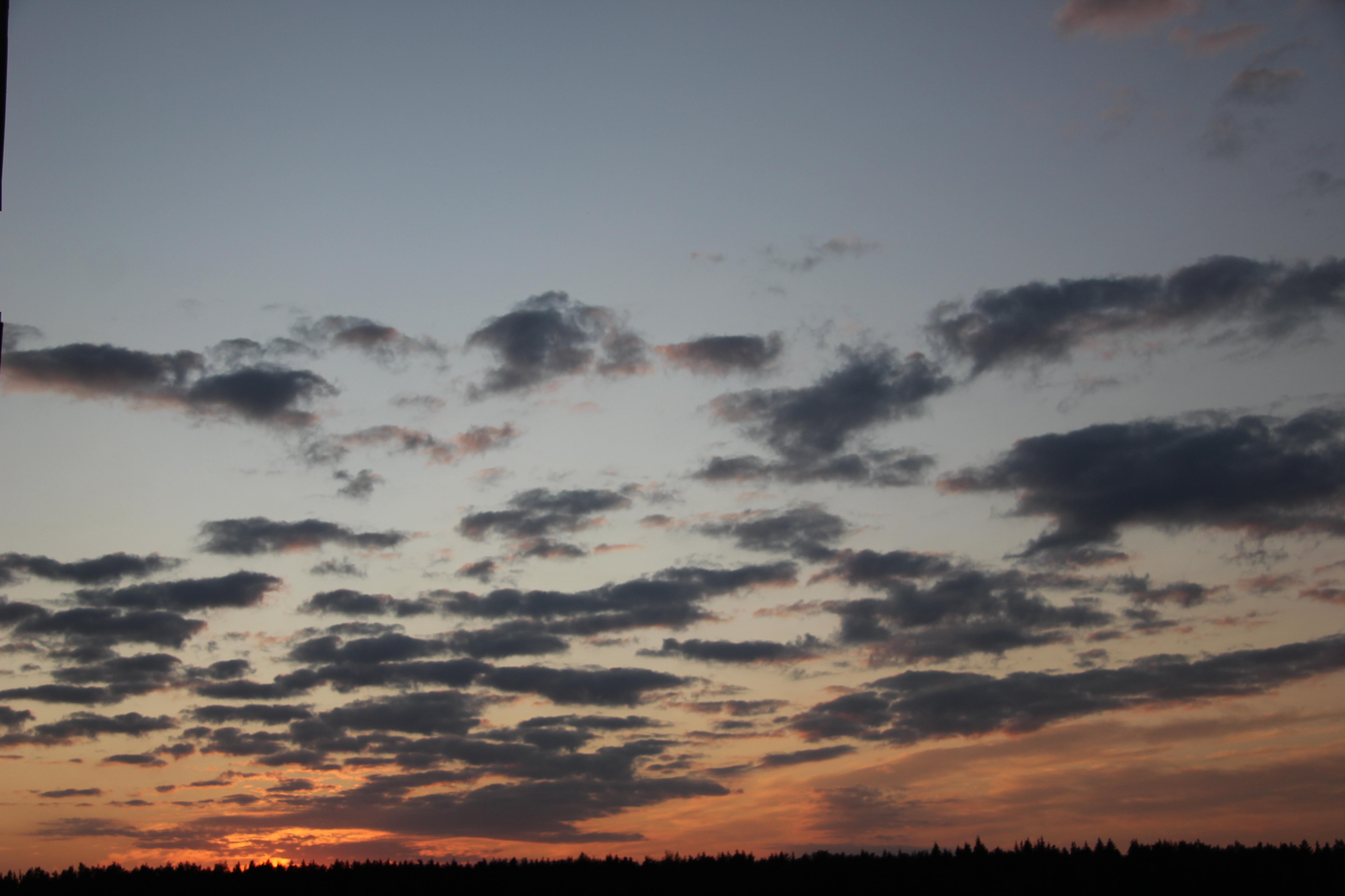 небо после захода солнца (37)