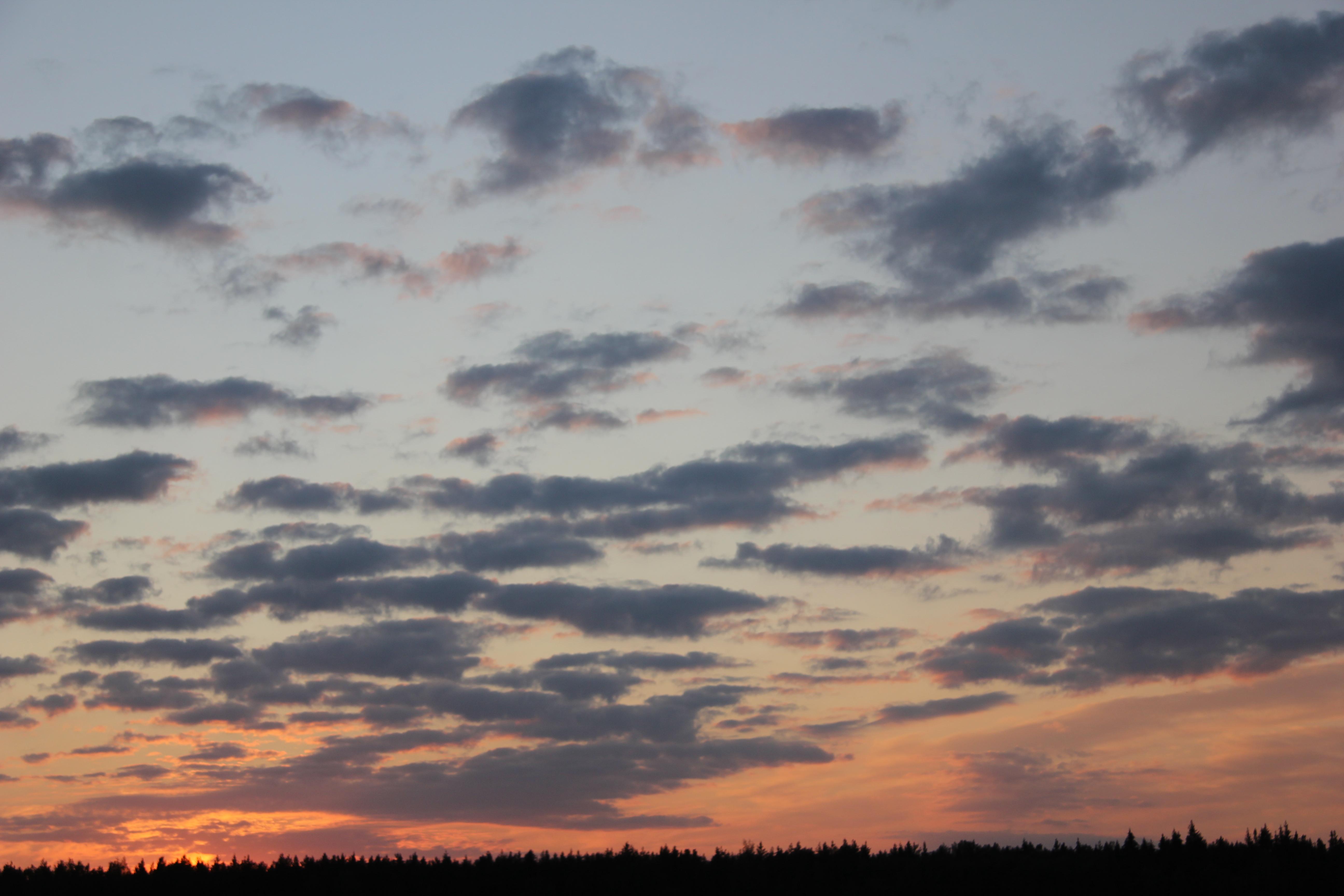 небо после захода солнца (38)