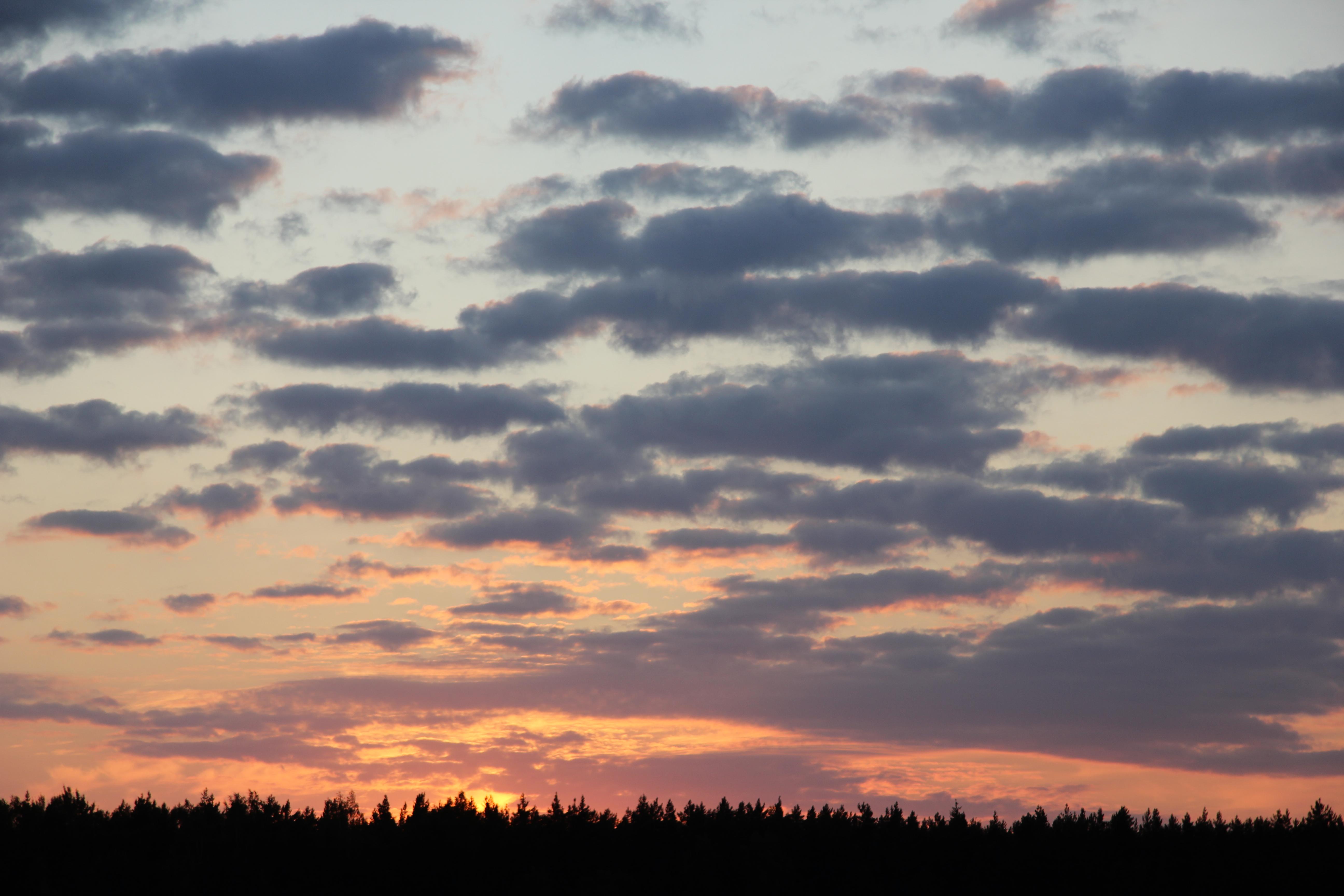 небо после захода солнца (39)