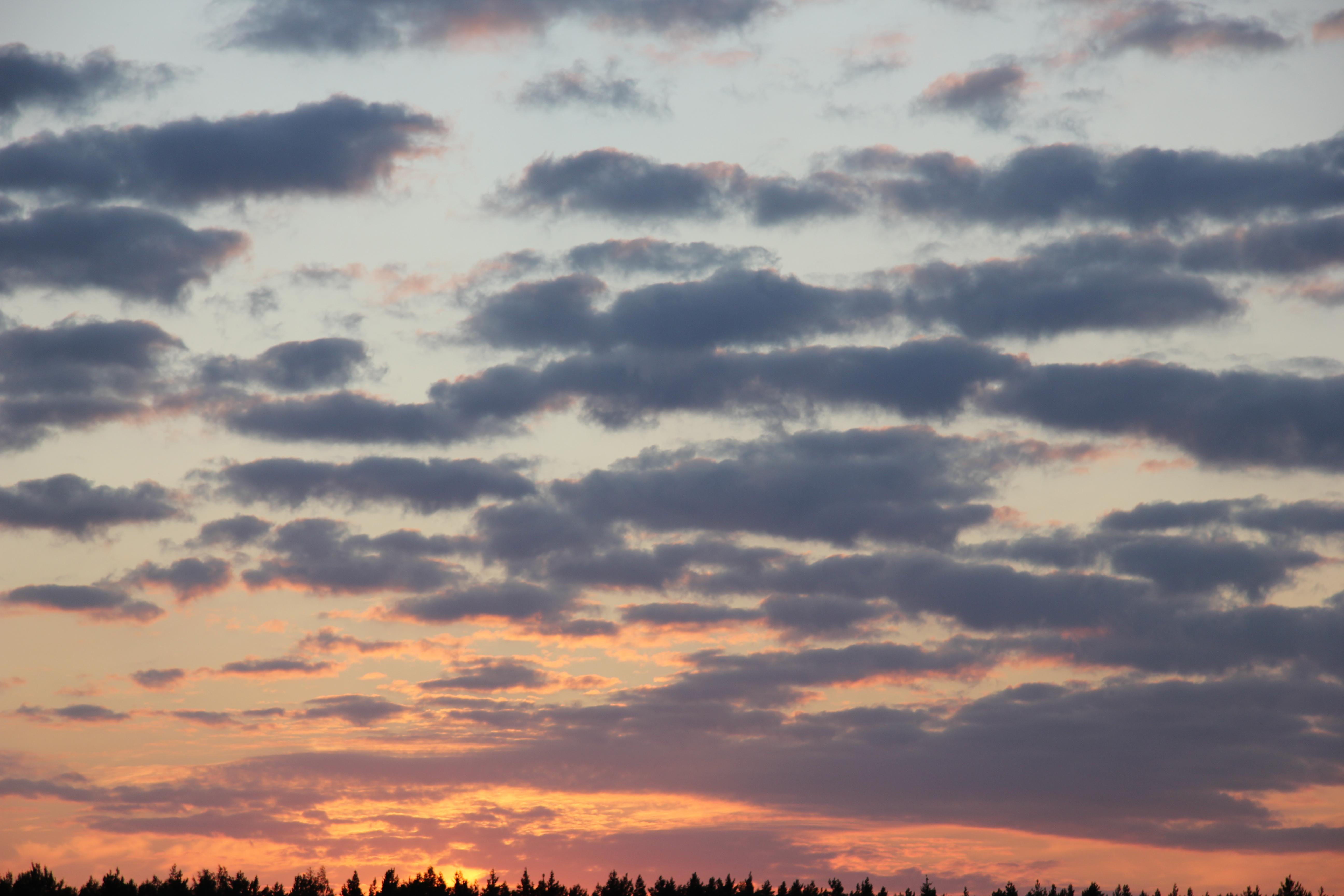 небо после захода солнца (40)