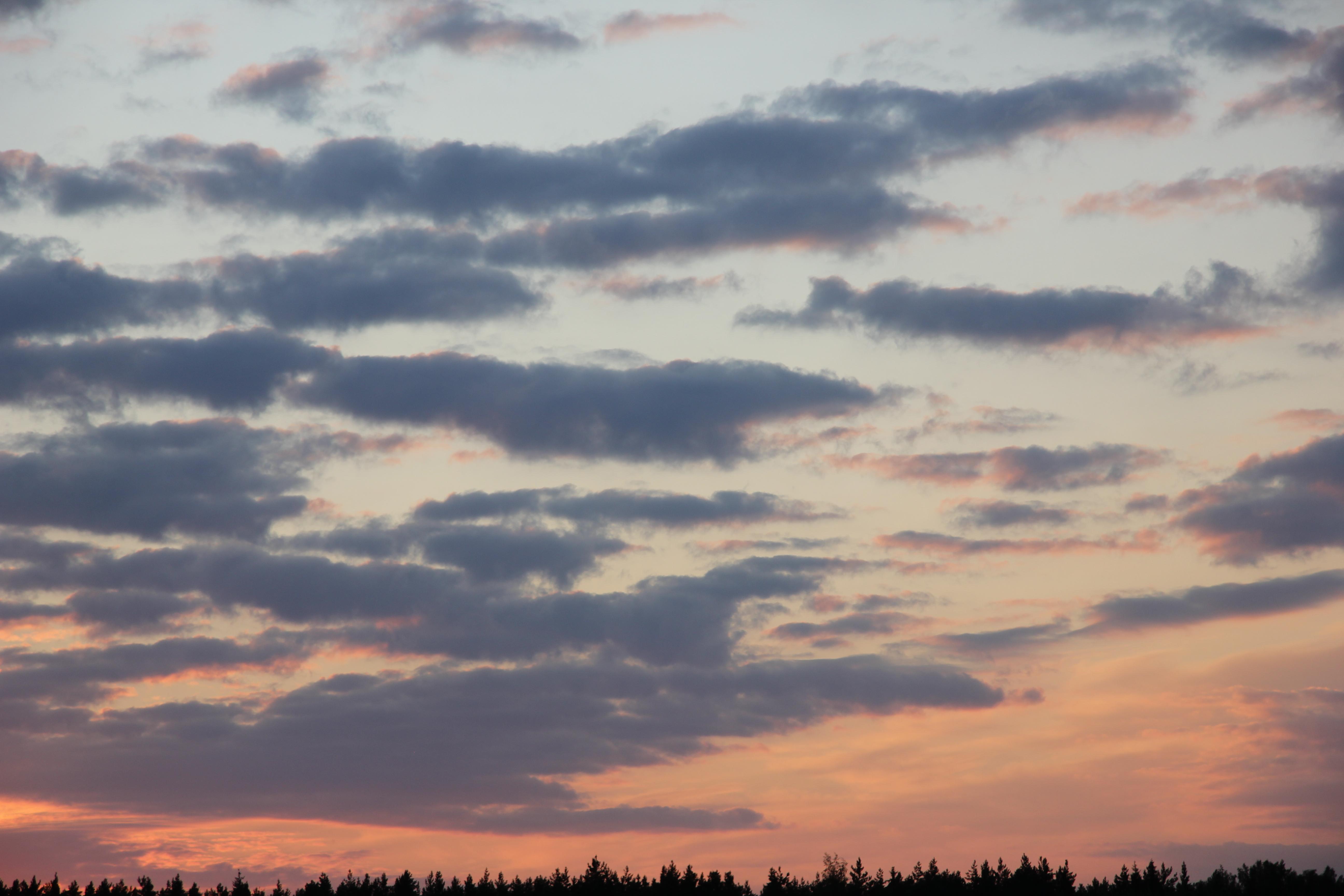 небо после захода солнца (42)