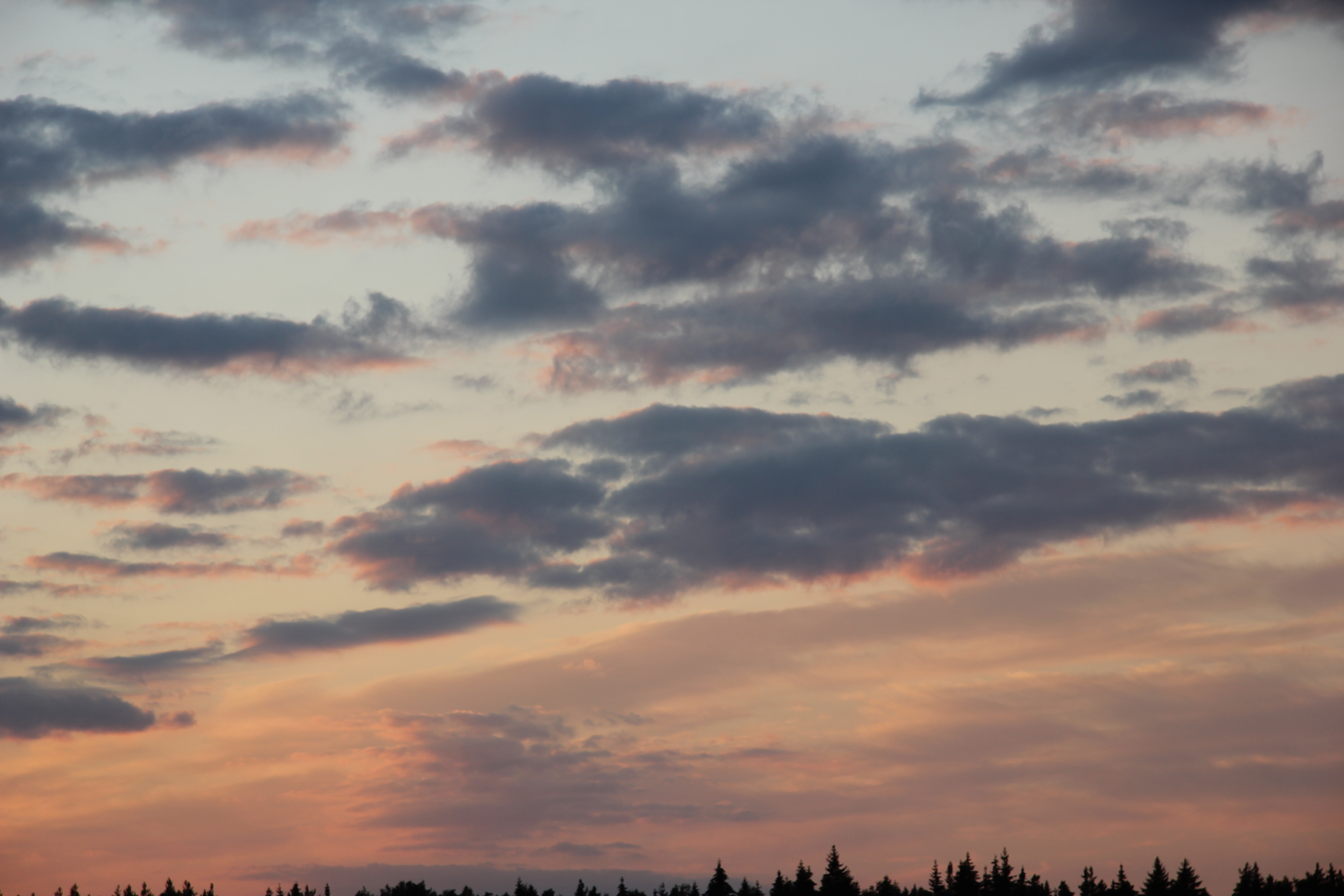 небо после захода солнца (43)