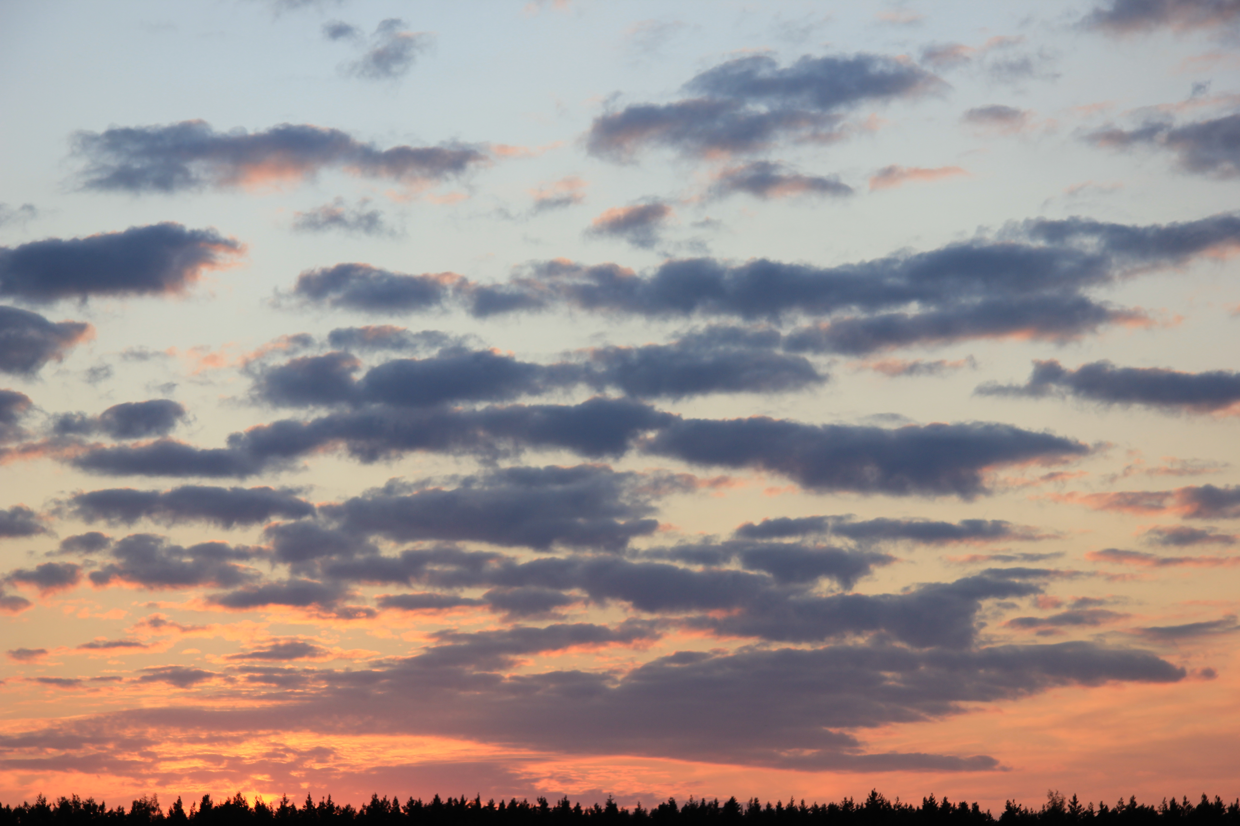 небо после захода солнца (44)