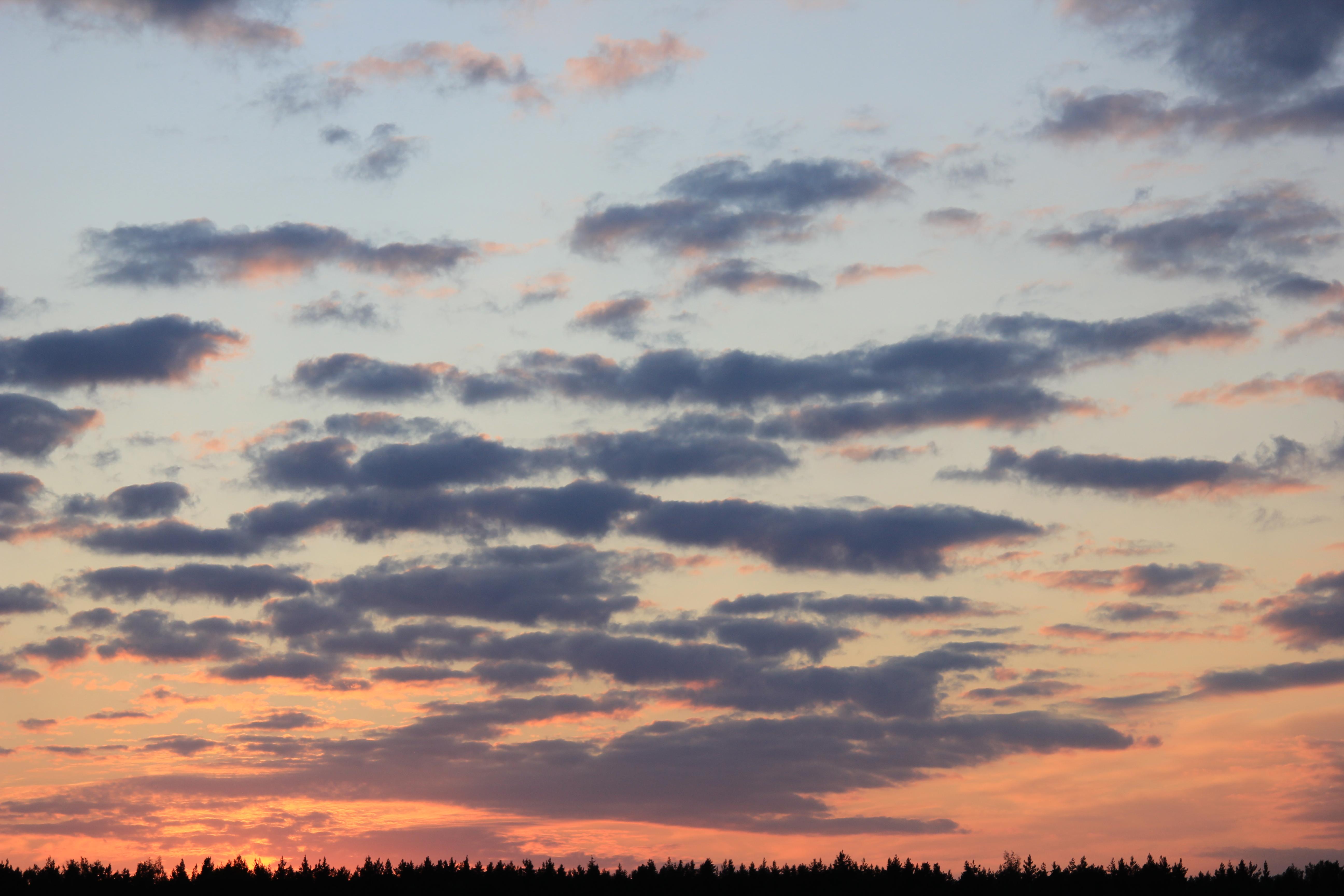 небо после захода солнца (45)