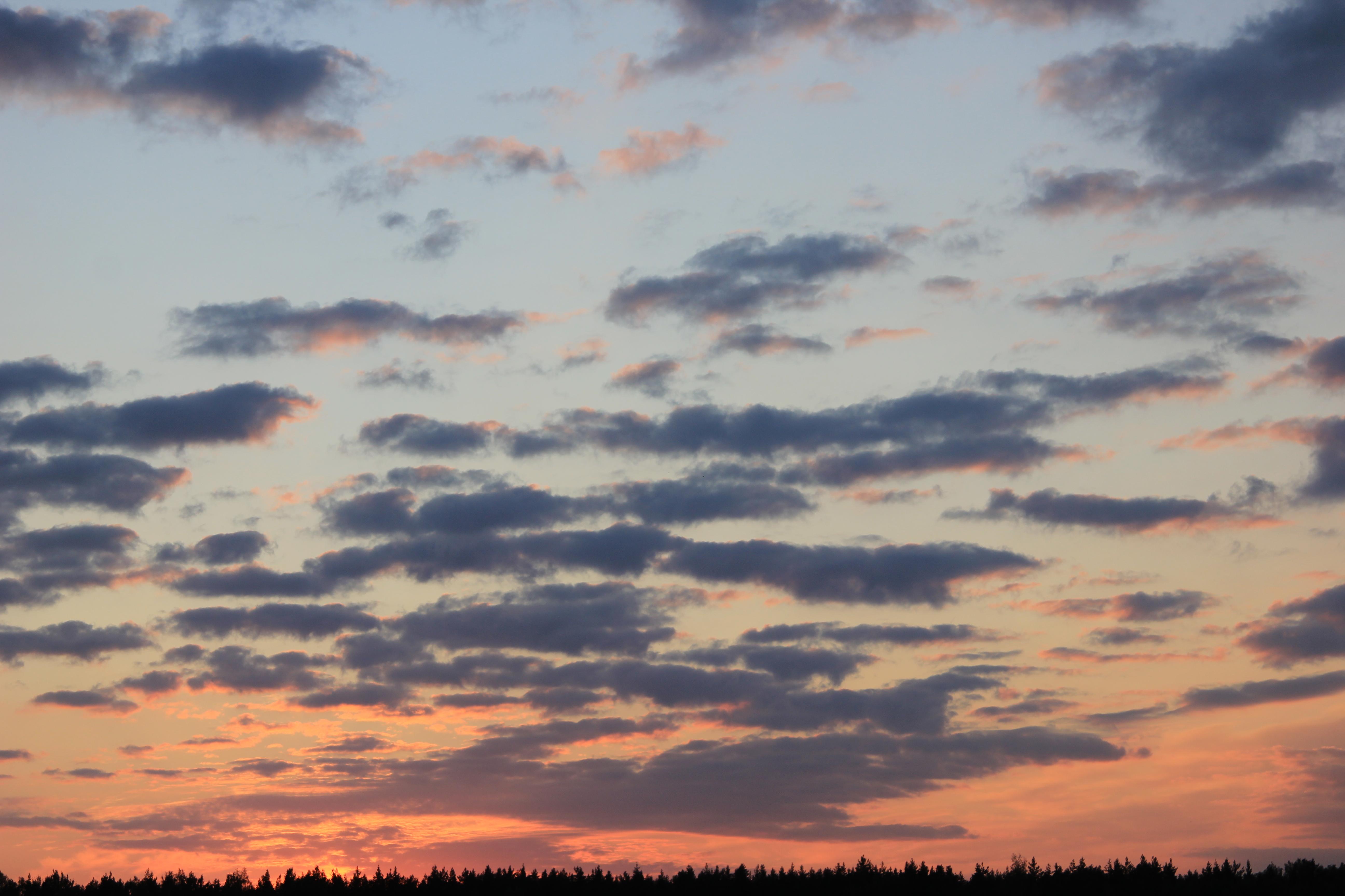 небо после захода солнца (46)