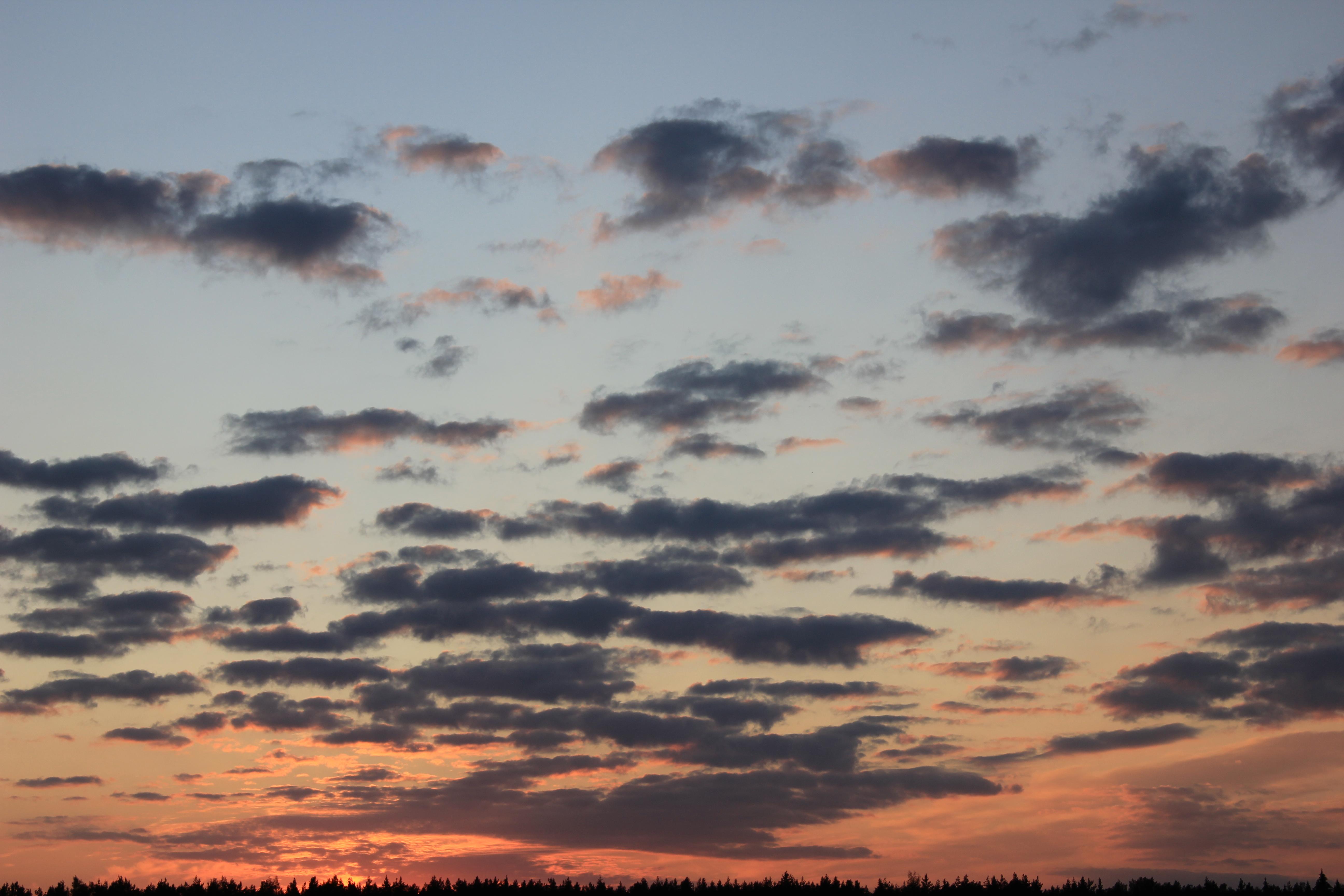 небо после захода солнца (47)