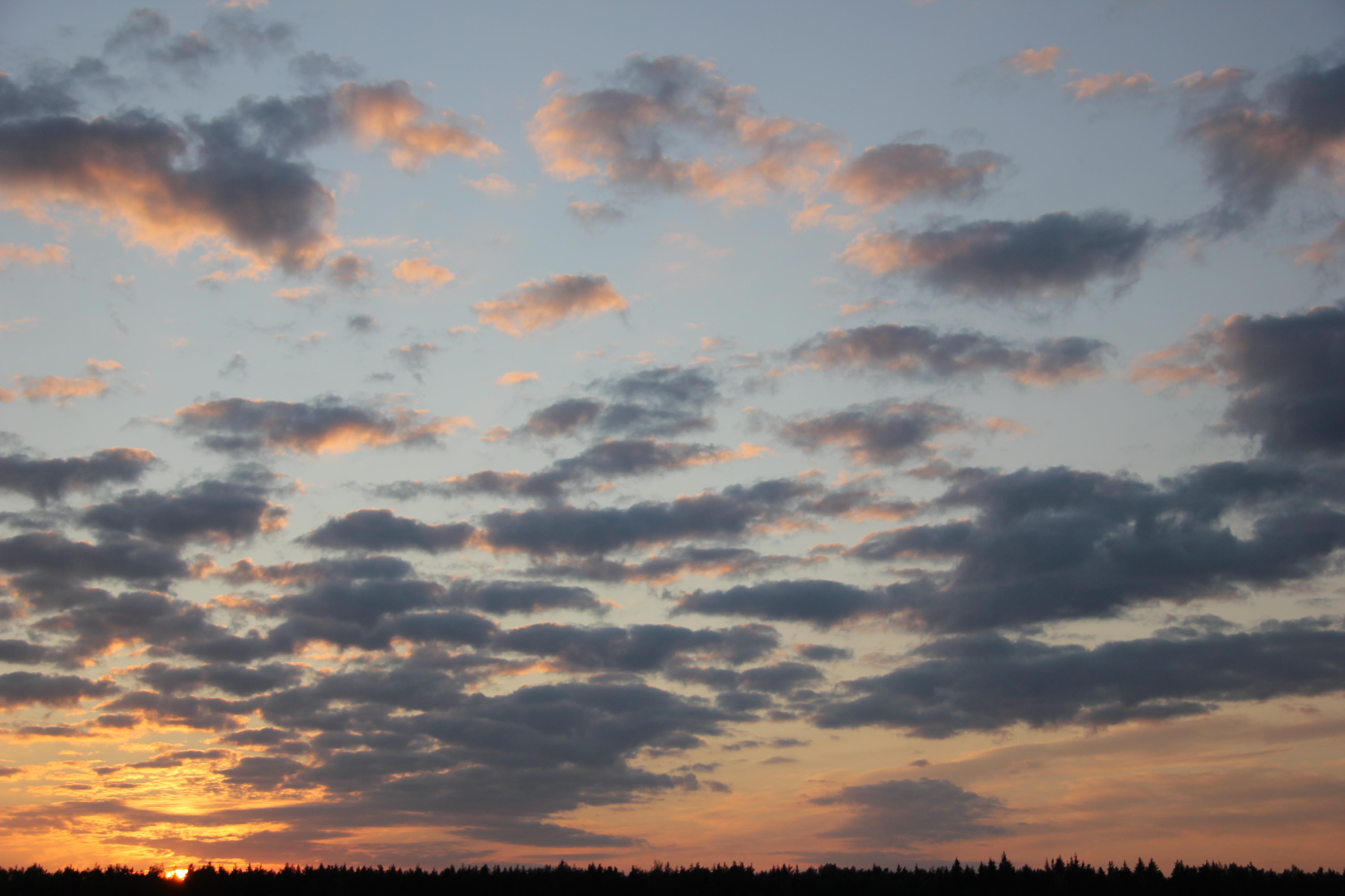 небо после захода солнца (5)