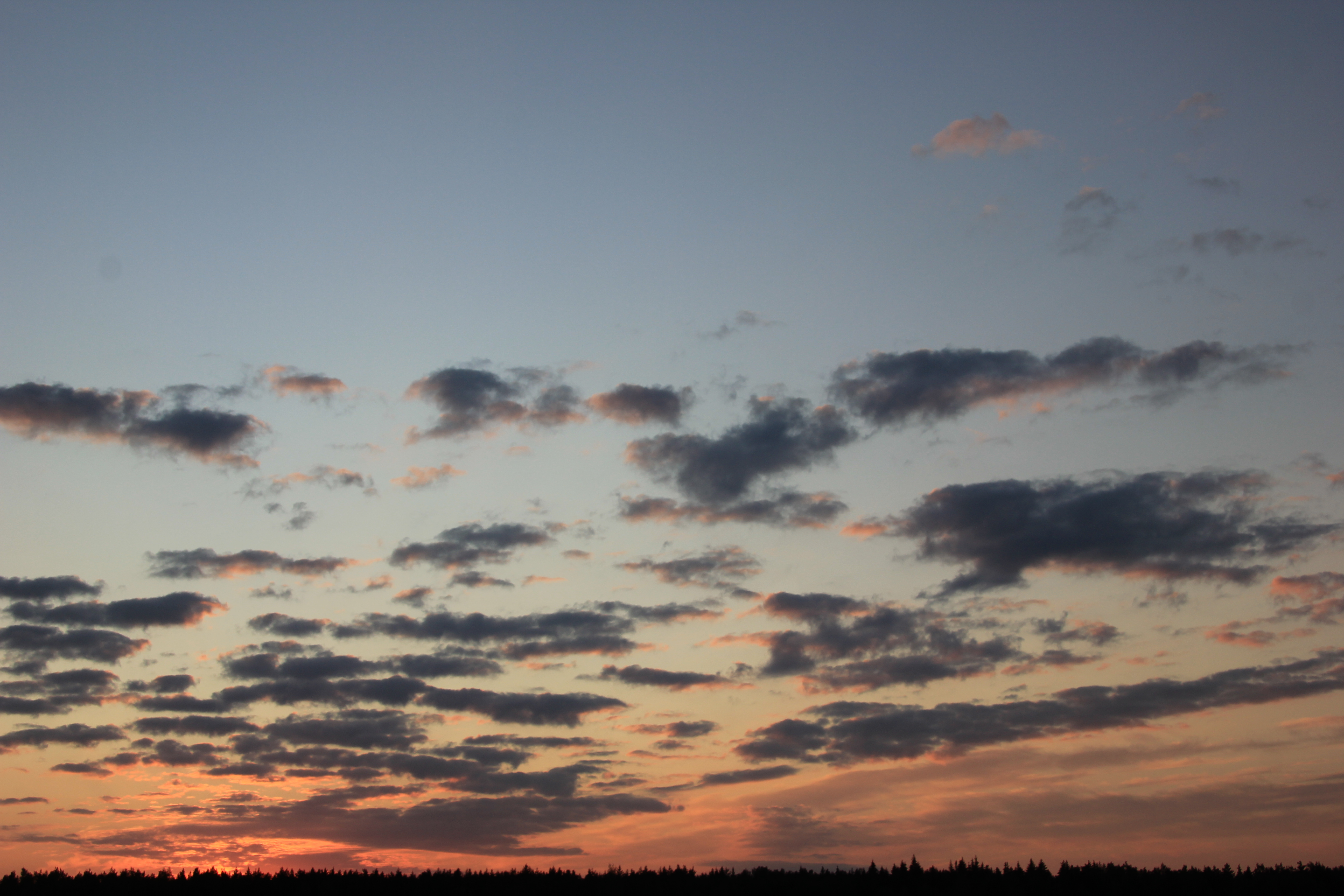 небо после захода солнца (50)