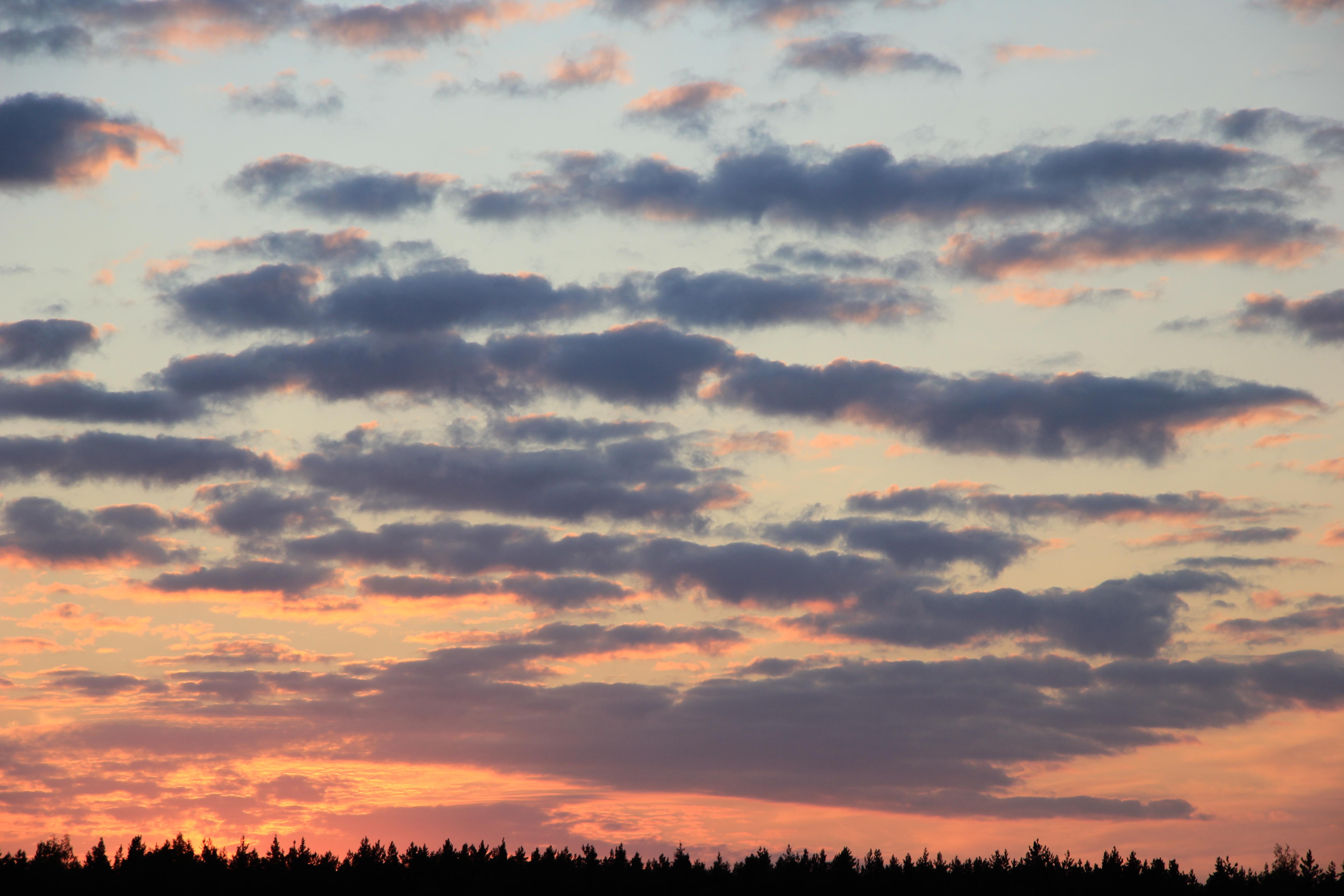 небо после захода солнца (51)