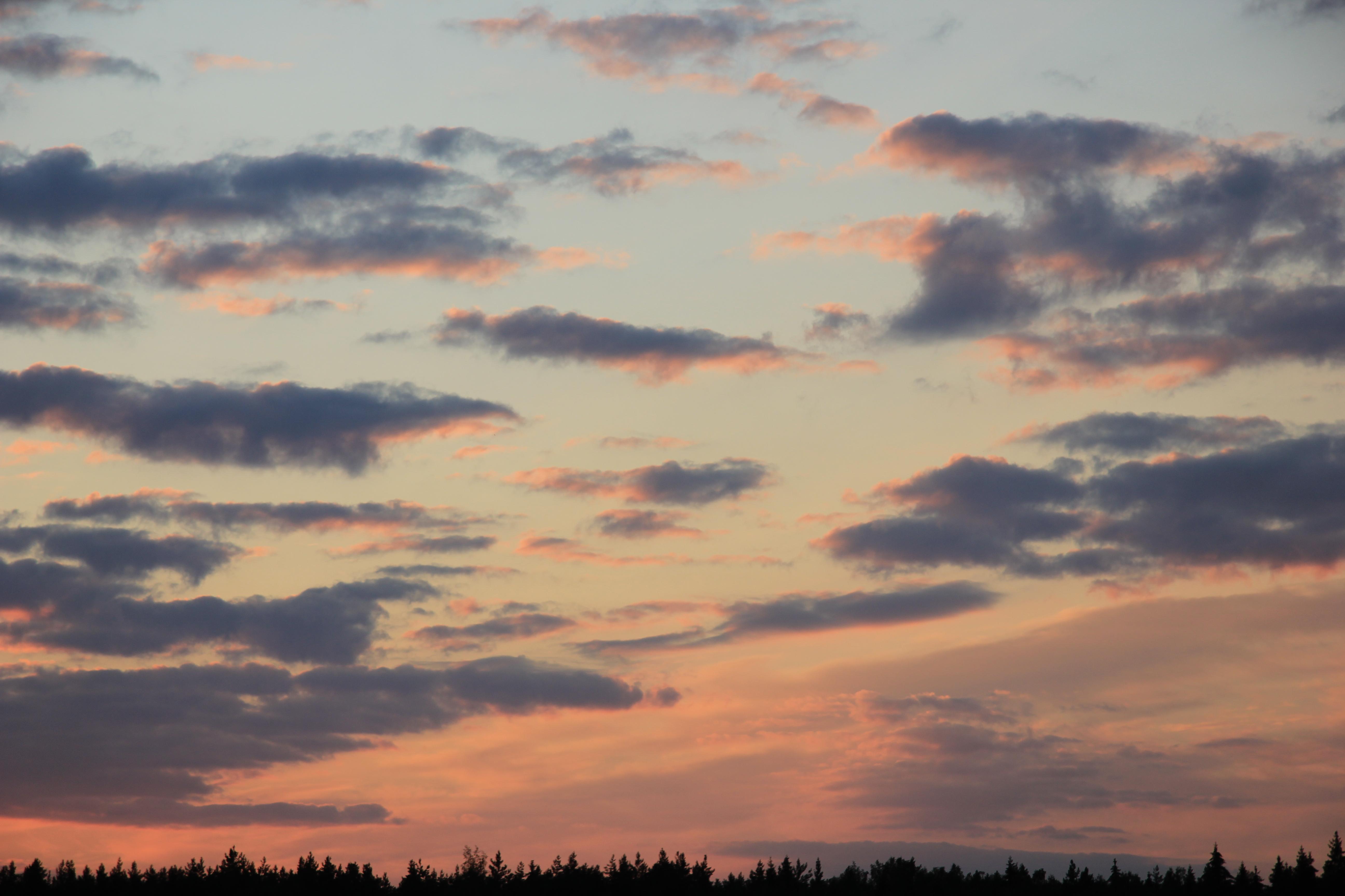 небо после захода солнца (53)
