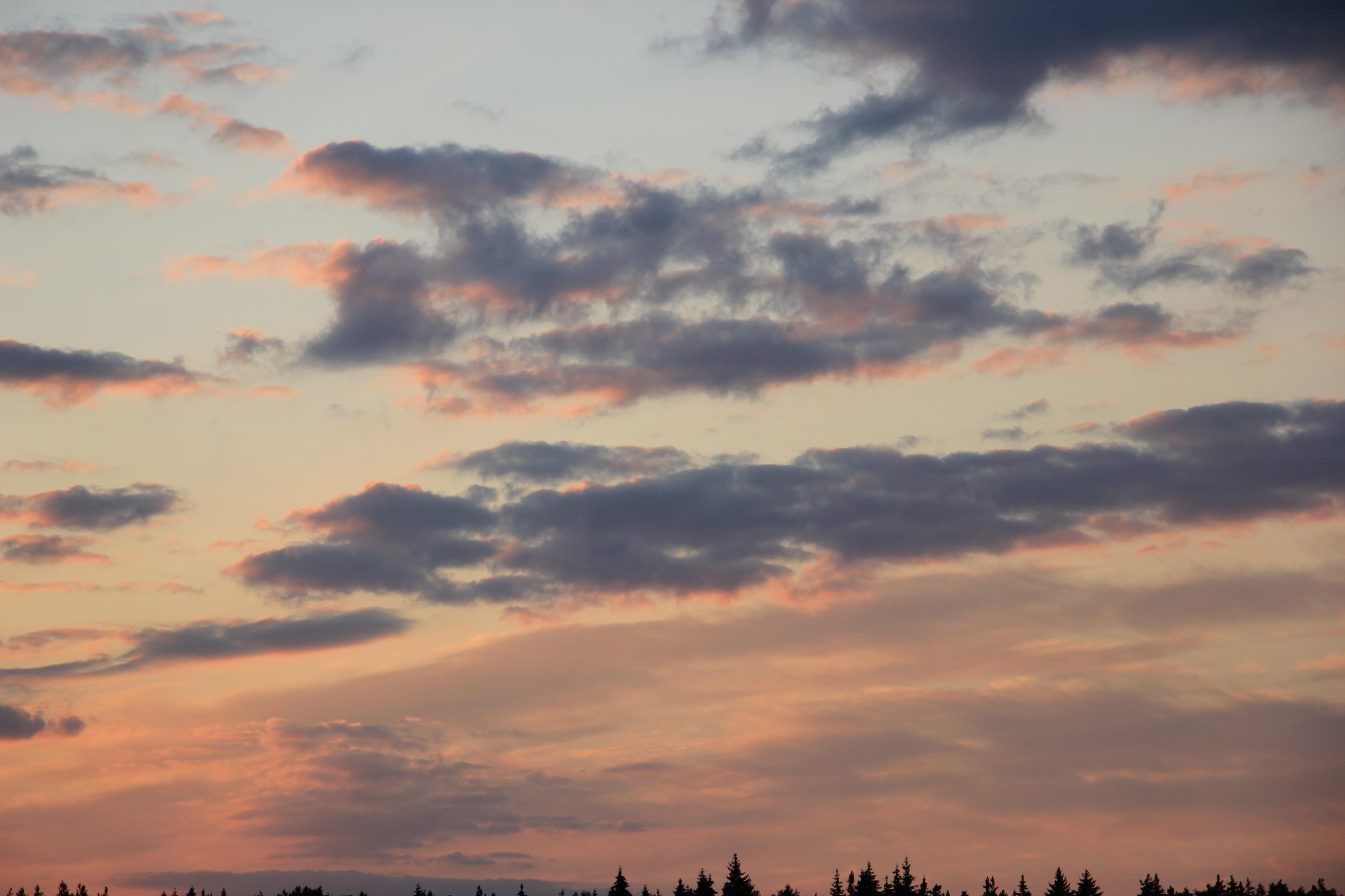 небо после захода солнца (54)