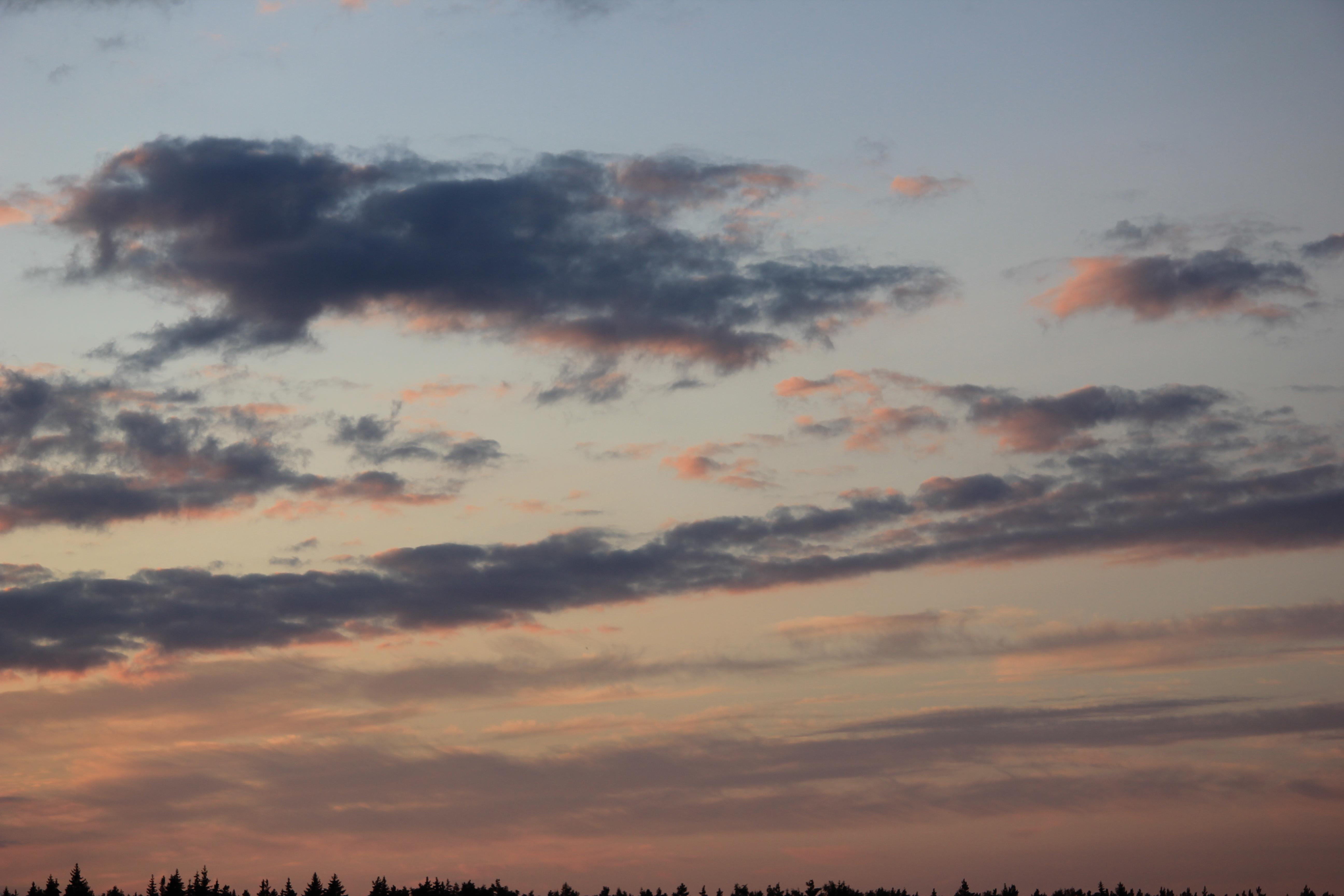 небо после захода солнца (55)