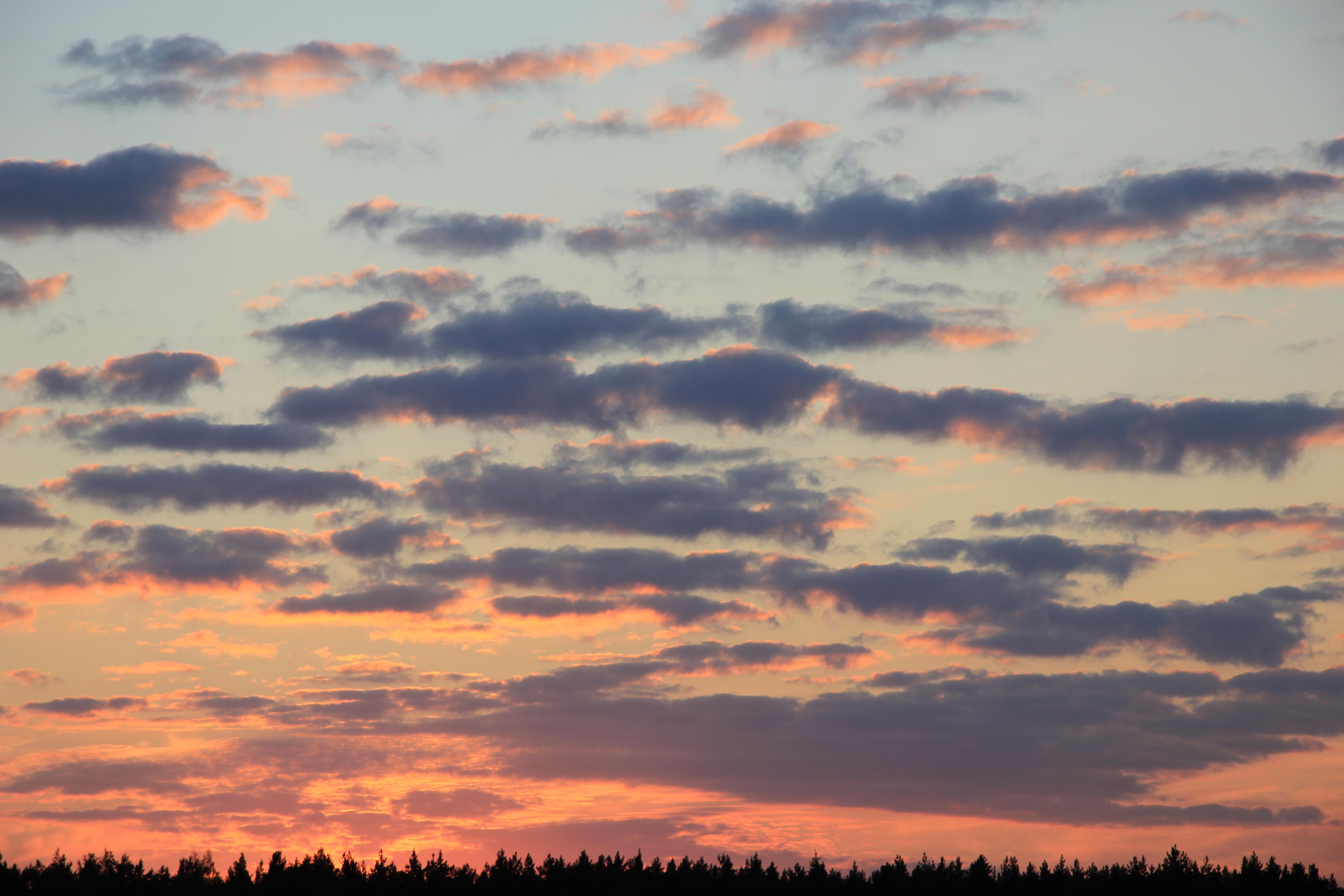 небо после захода солнца (57)
