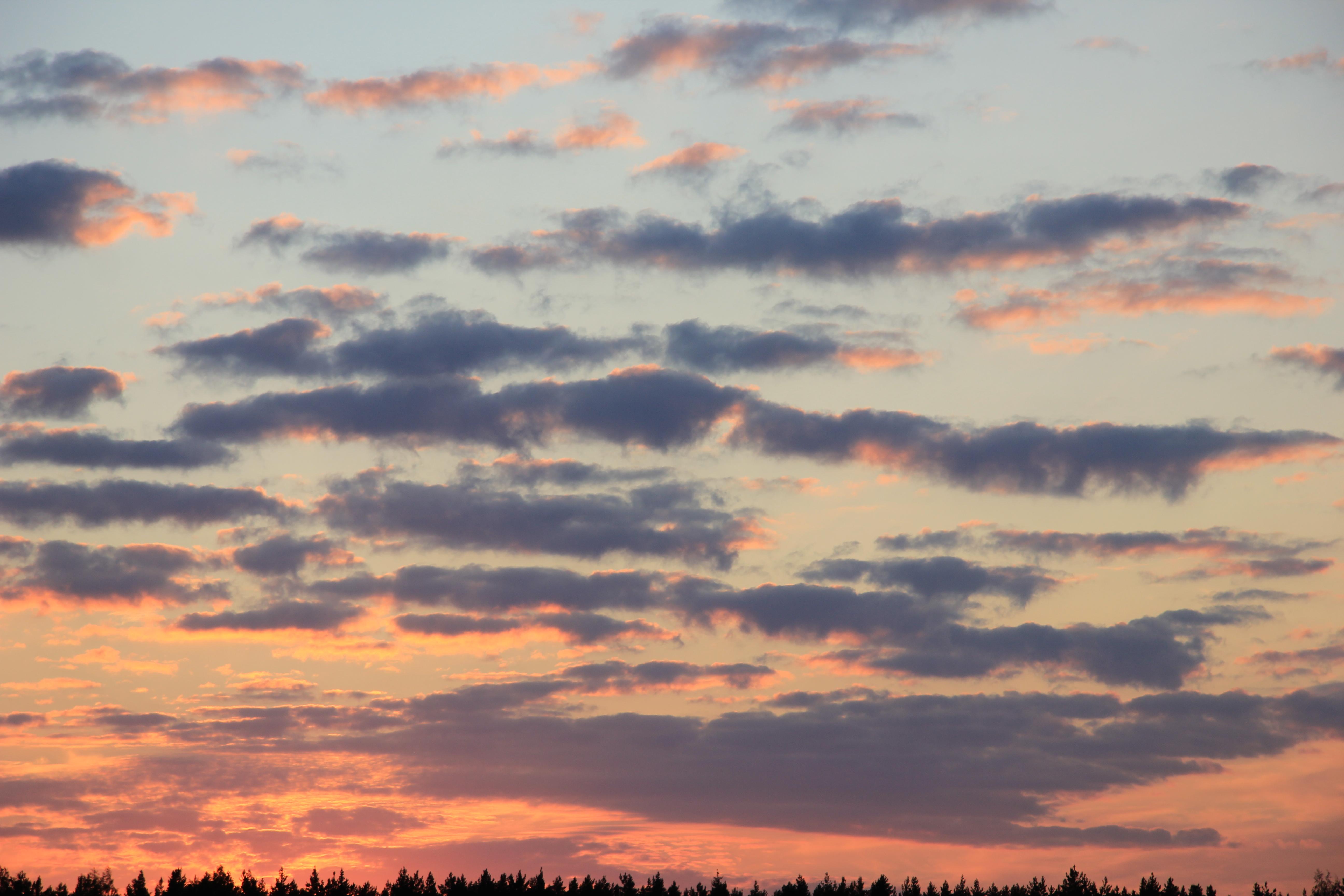 небо после захода солнца (58)