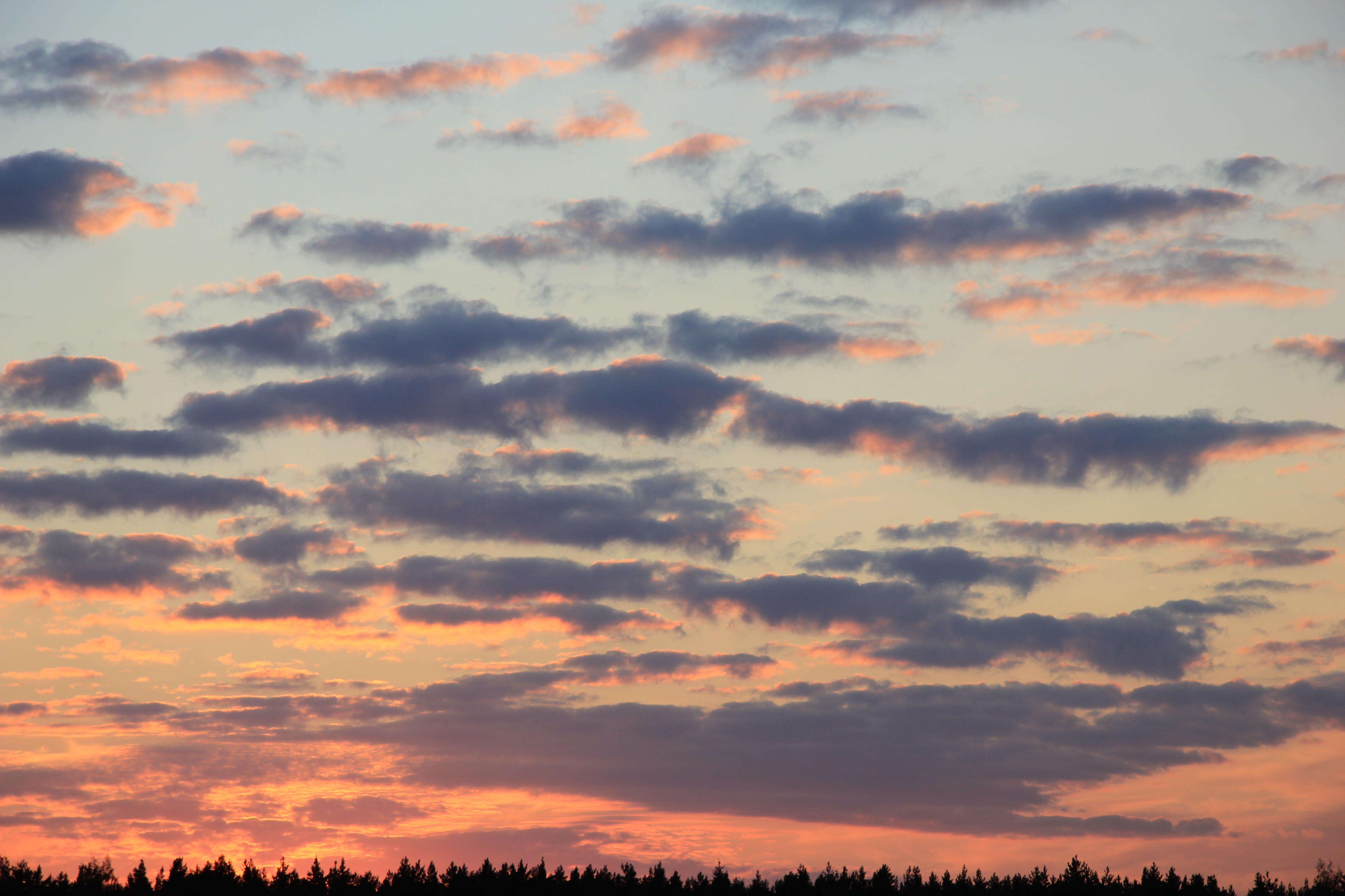 небо после захода солнца (59)