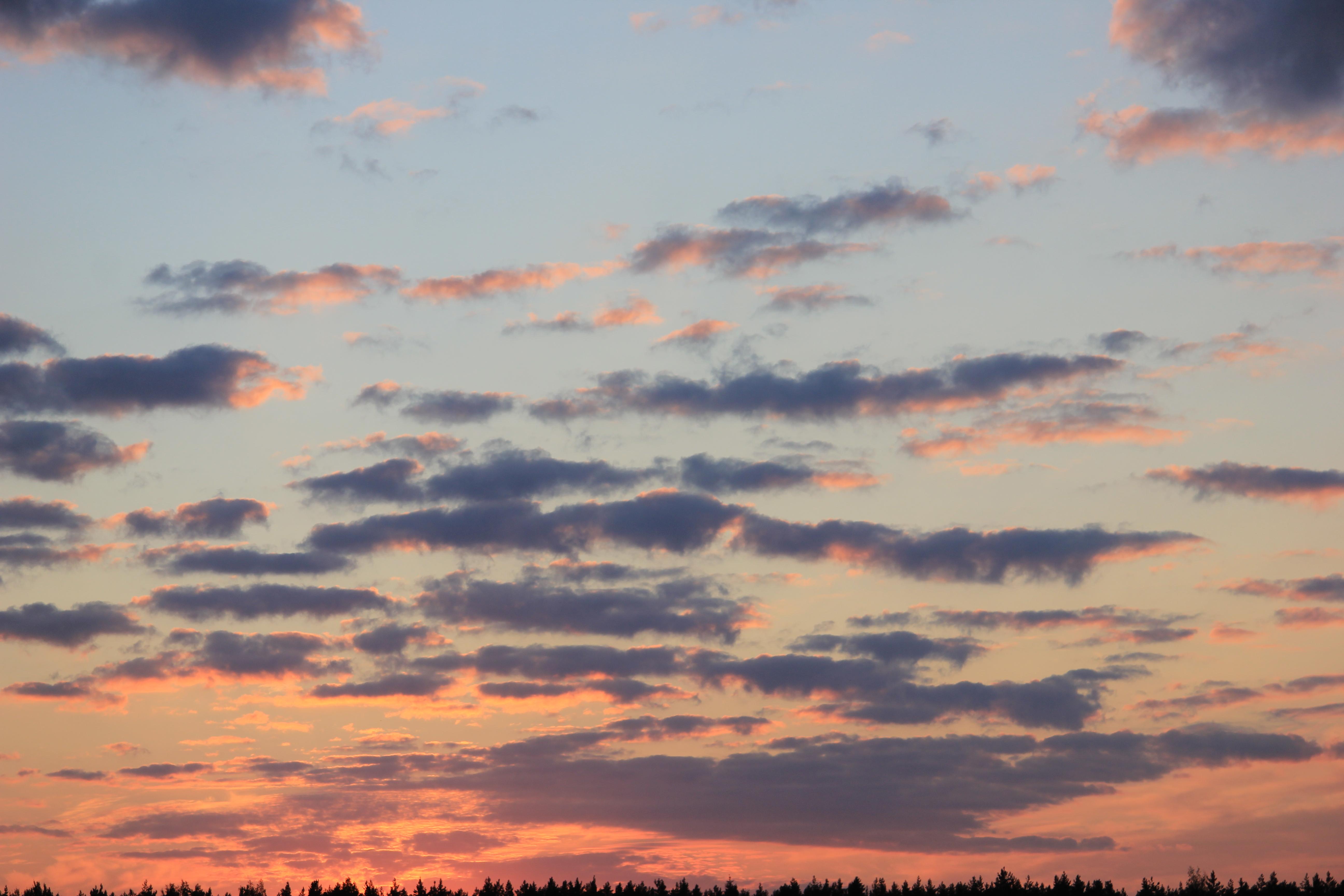 небо после захода солнца (60)