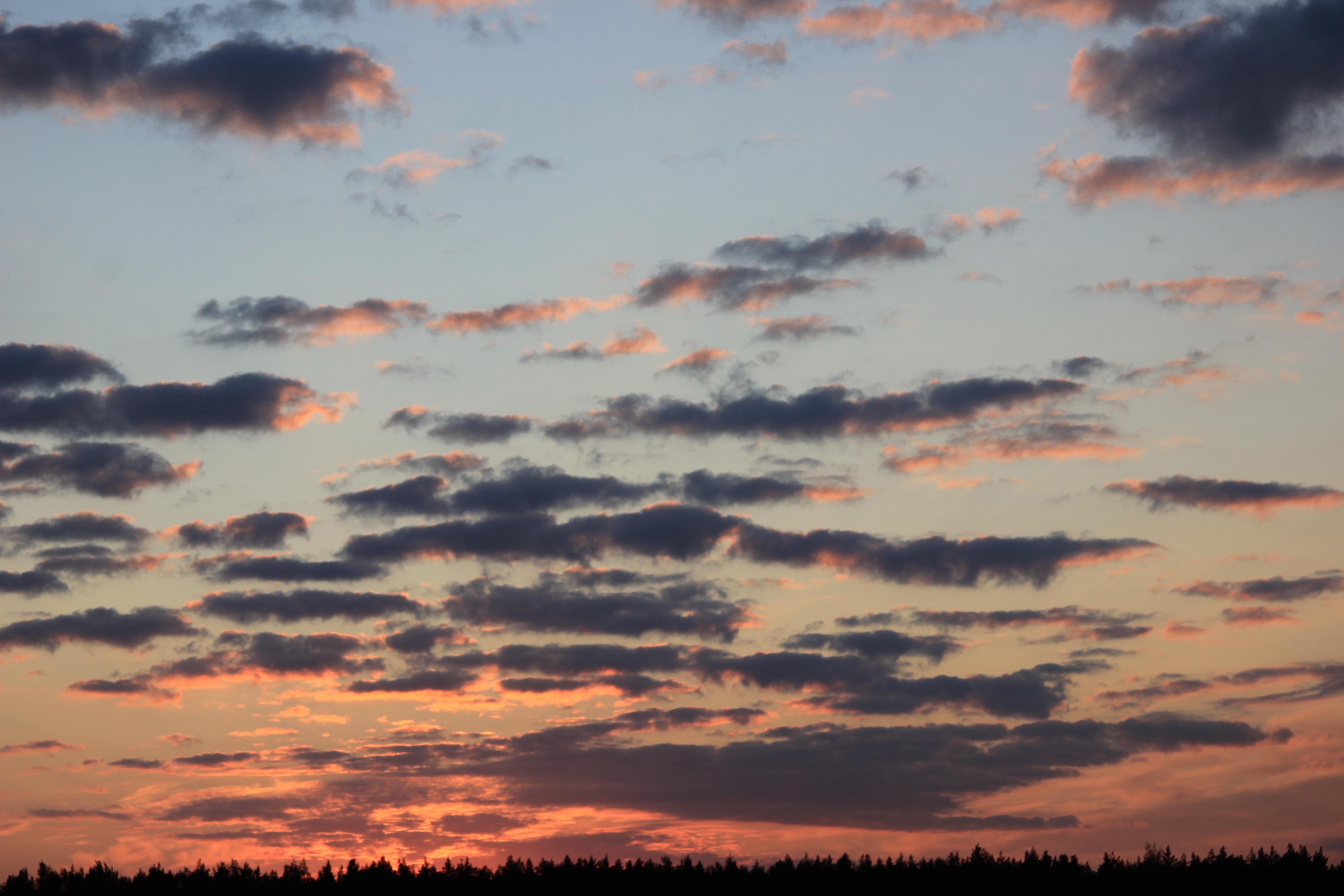 небо после захода солнца (61)