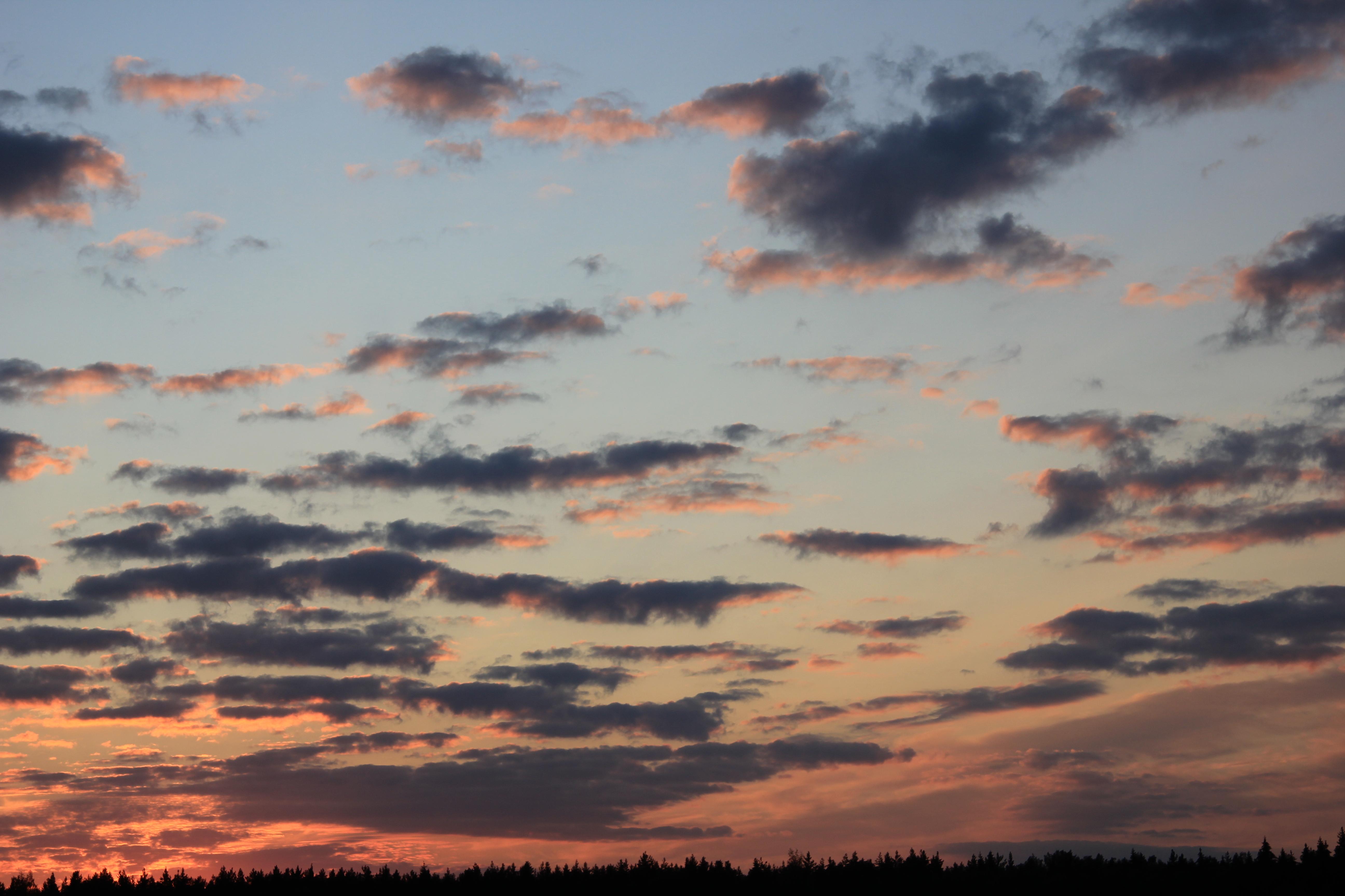 небо после захода солнца (62)