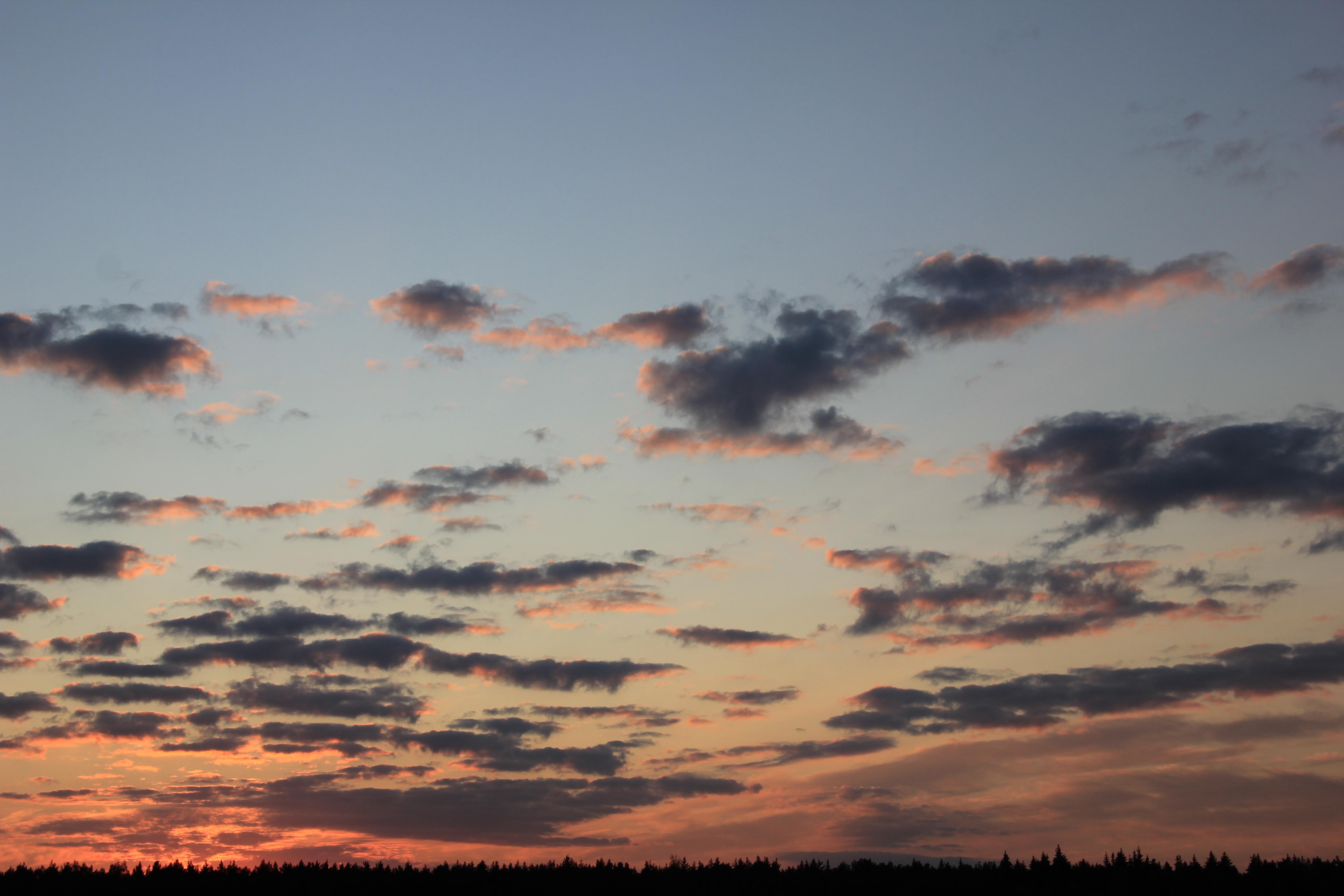 небо после захода солнца (63)