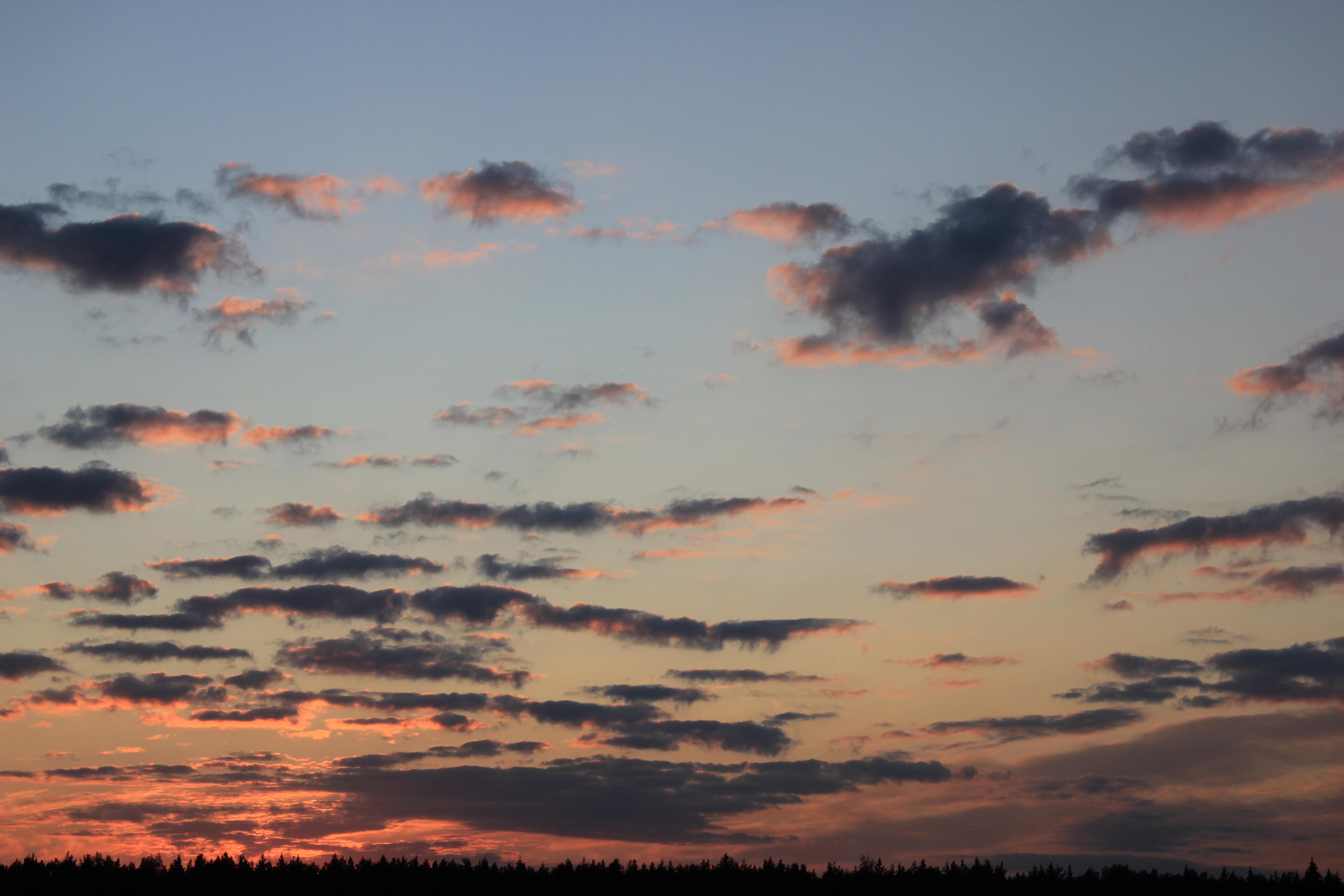 небо после захода солнца (67)