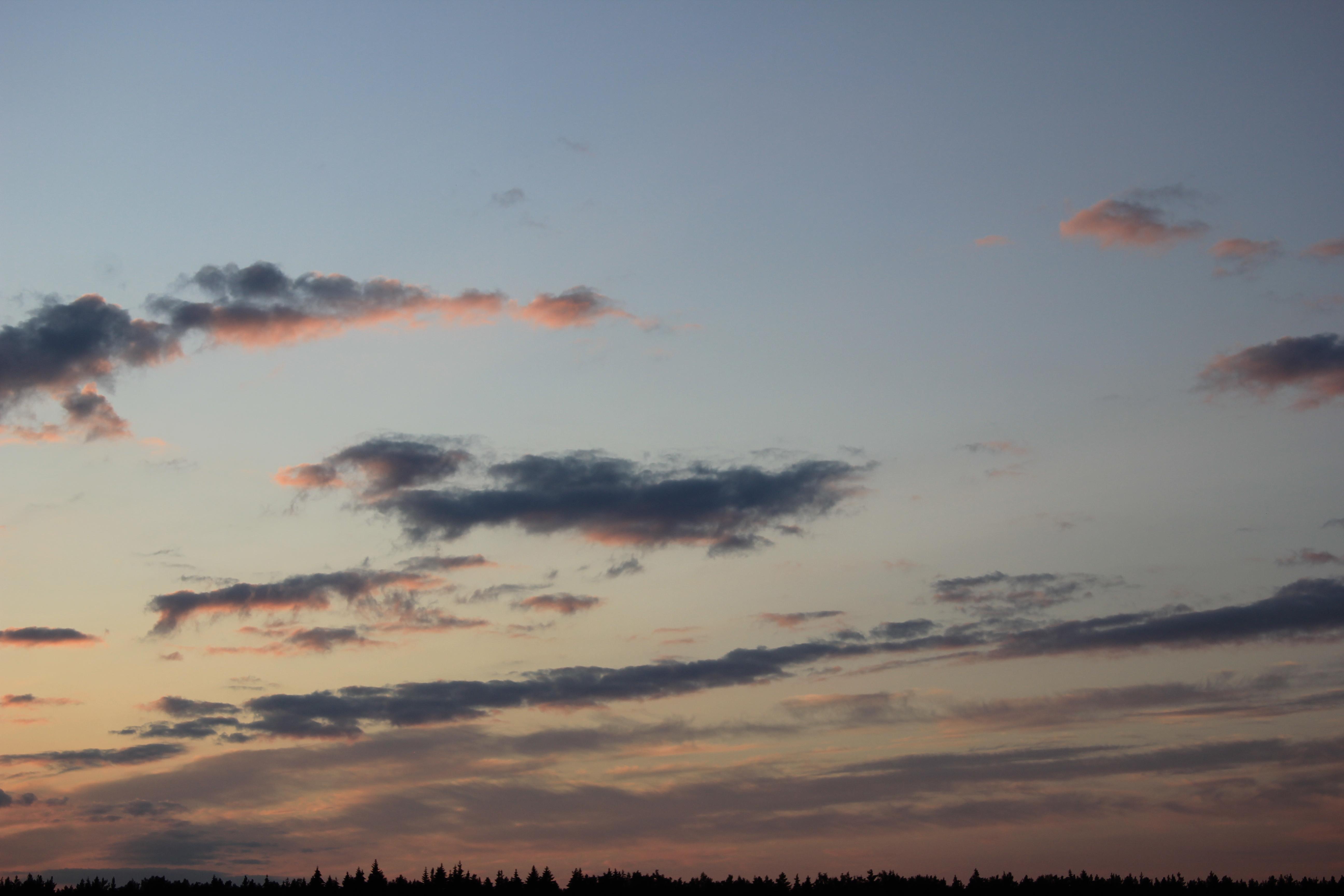 небо после захода солнца (69)
