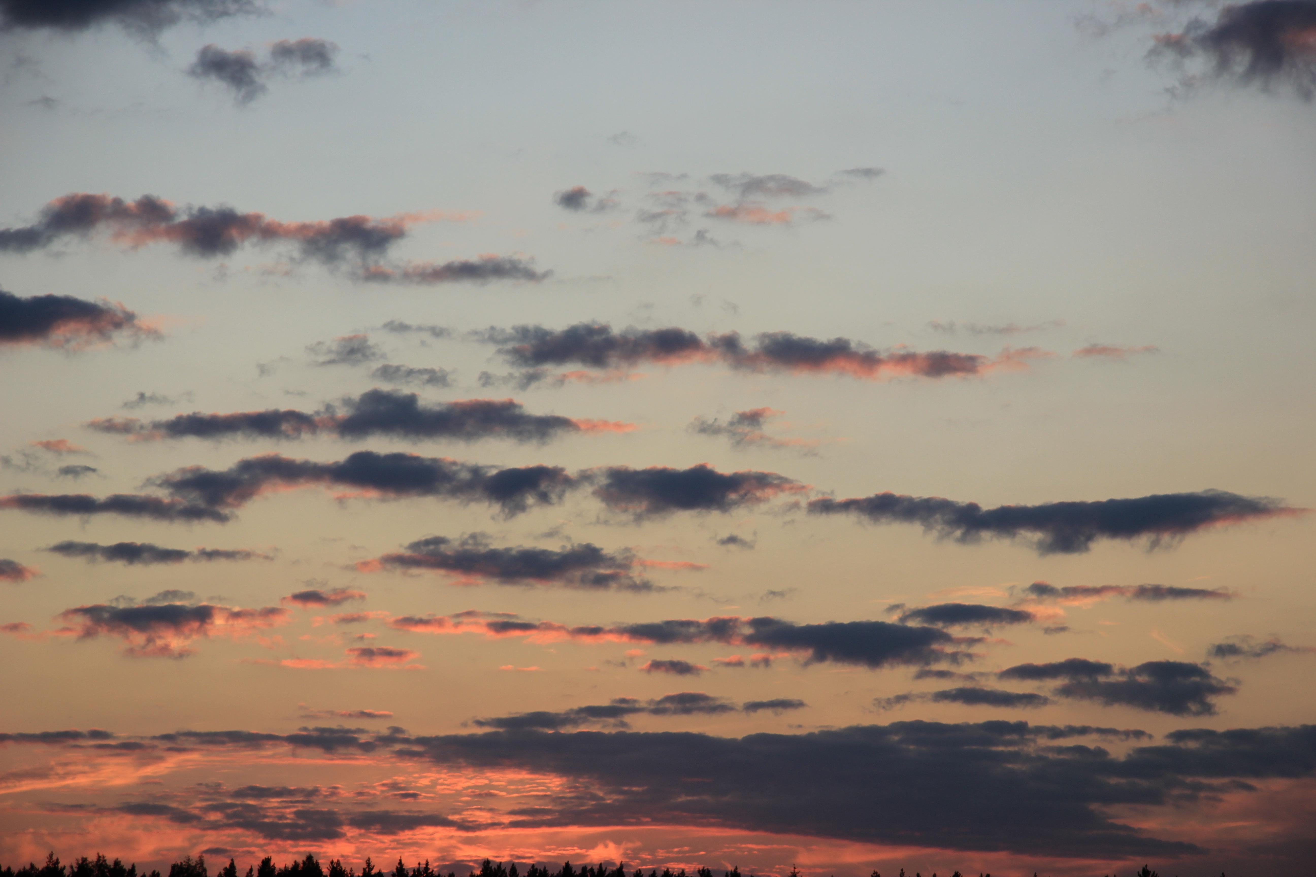 небо после захода солнца (75)