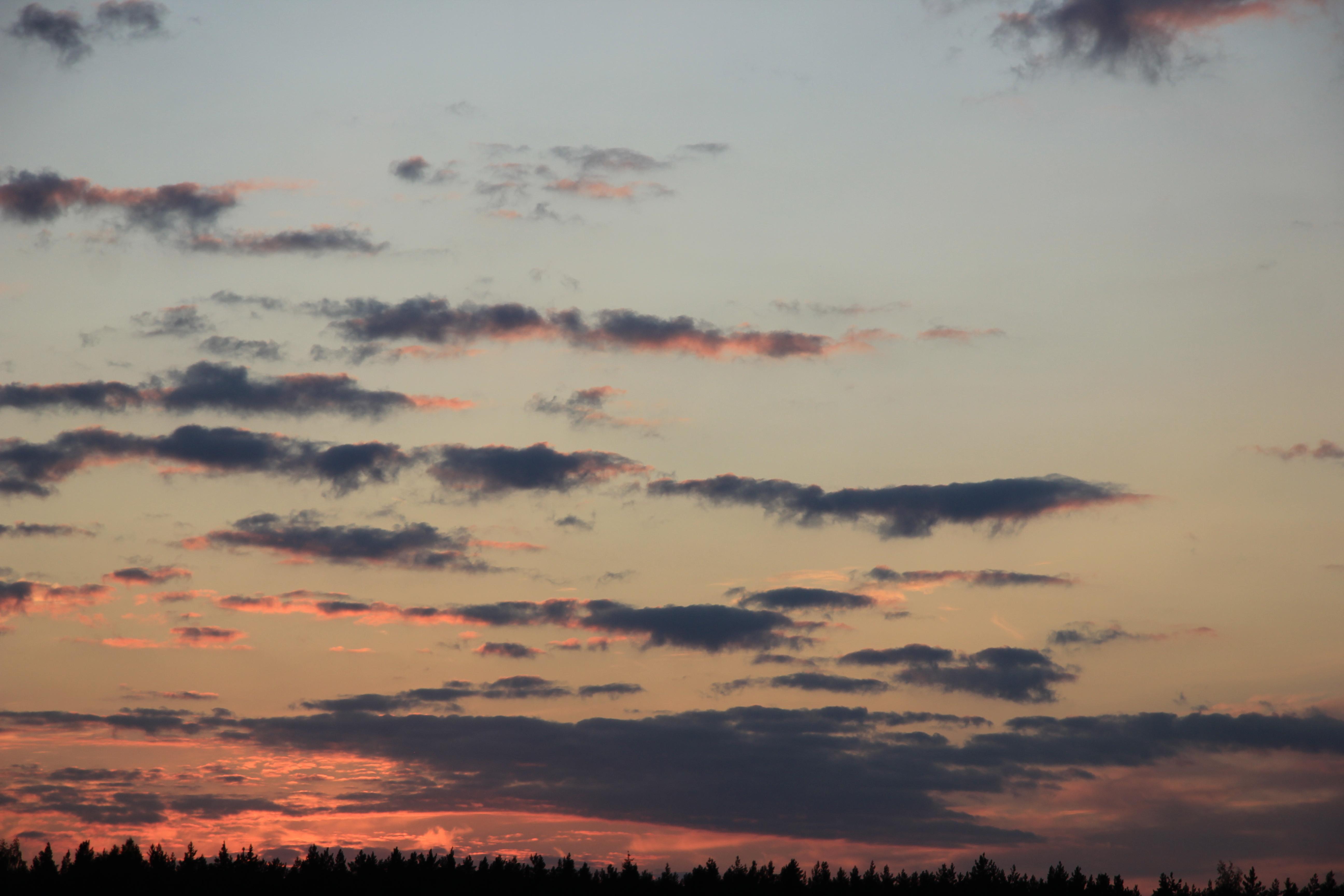 небо после захода солнца (76)