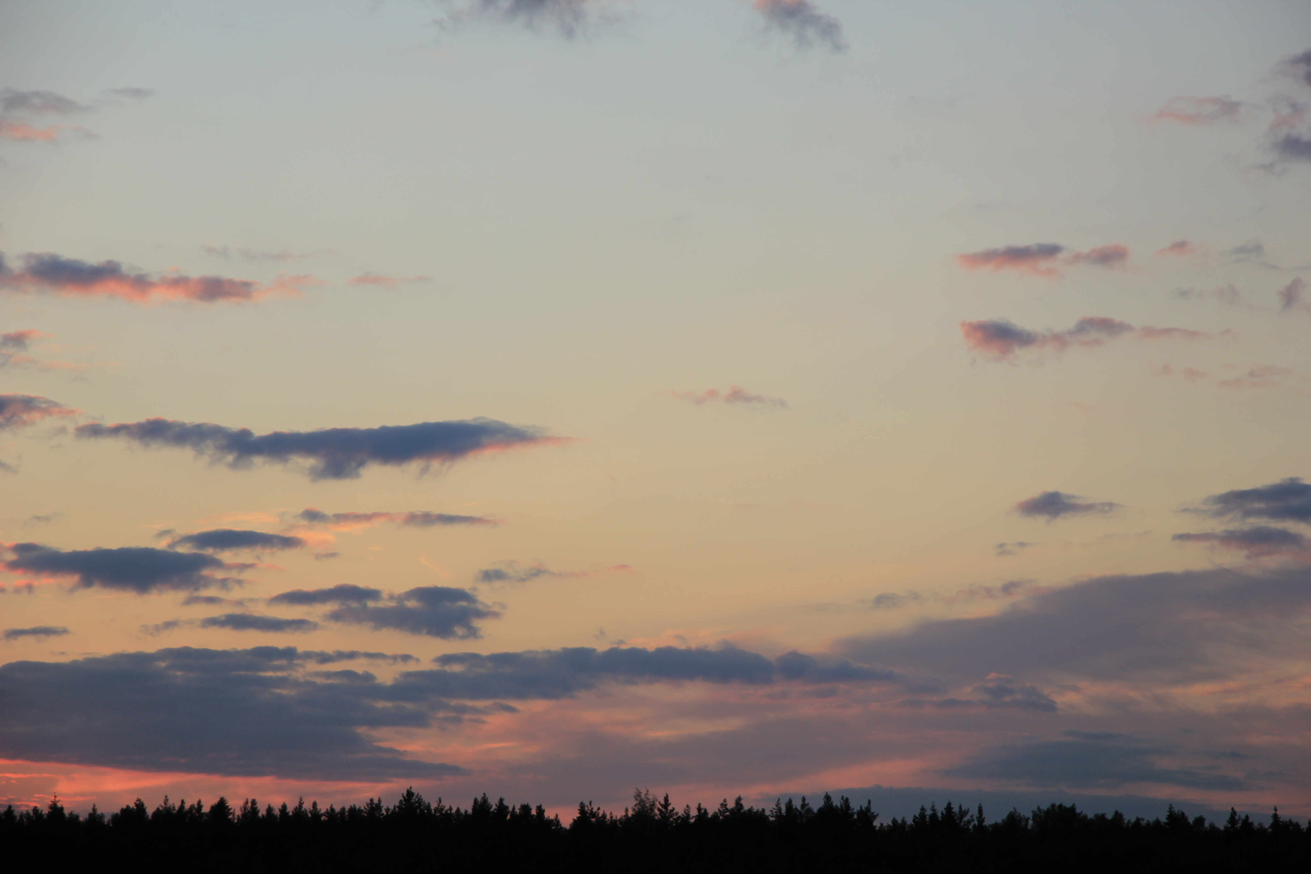 небо после захода солнца (78)