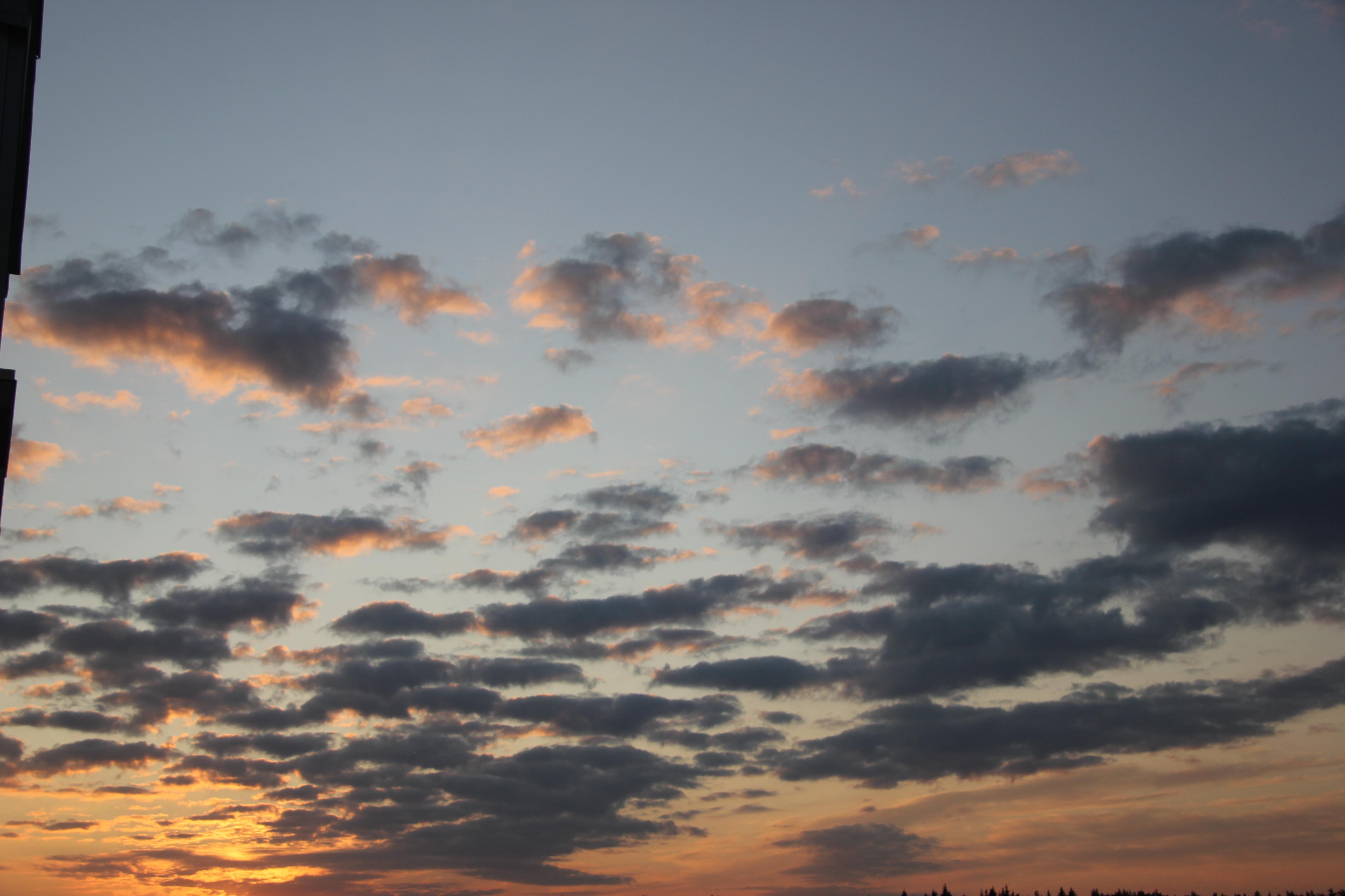 небо после захода солнца (9)