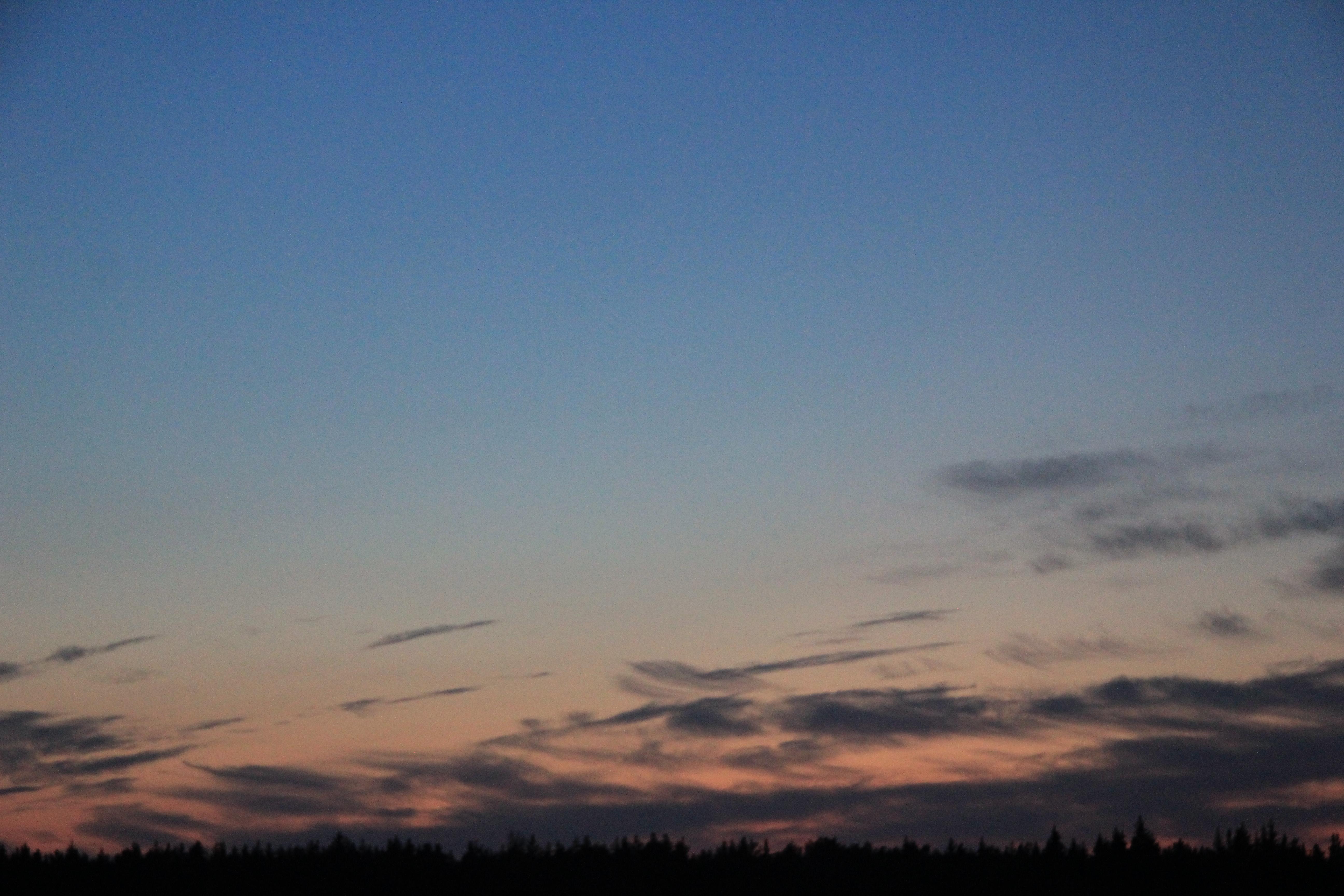 розовое небо заката (1)