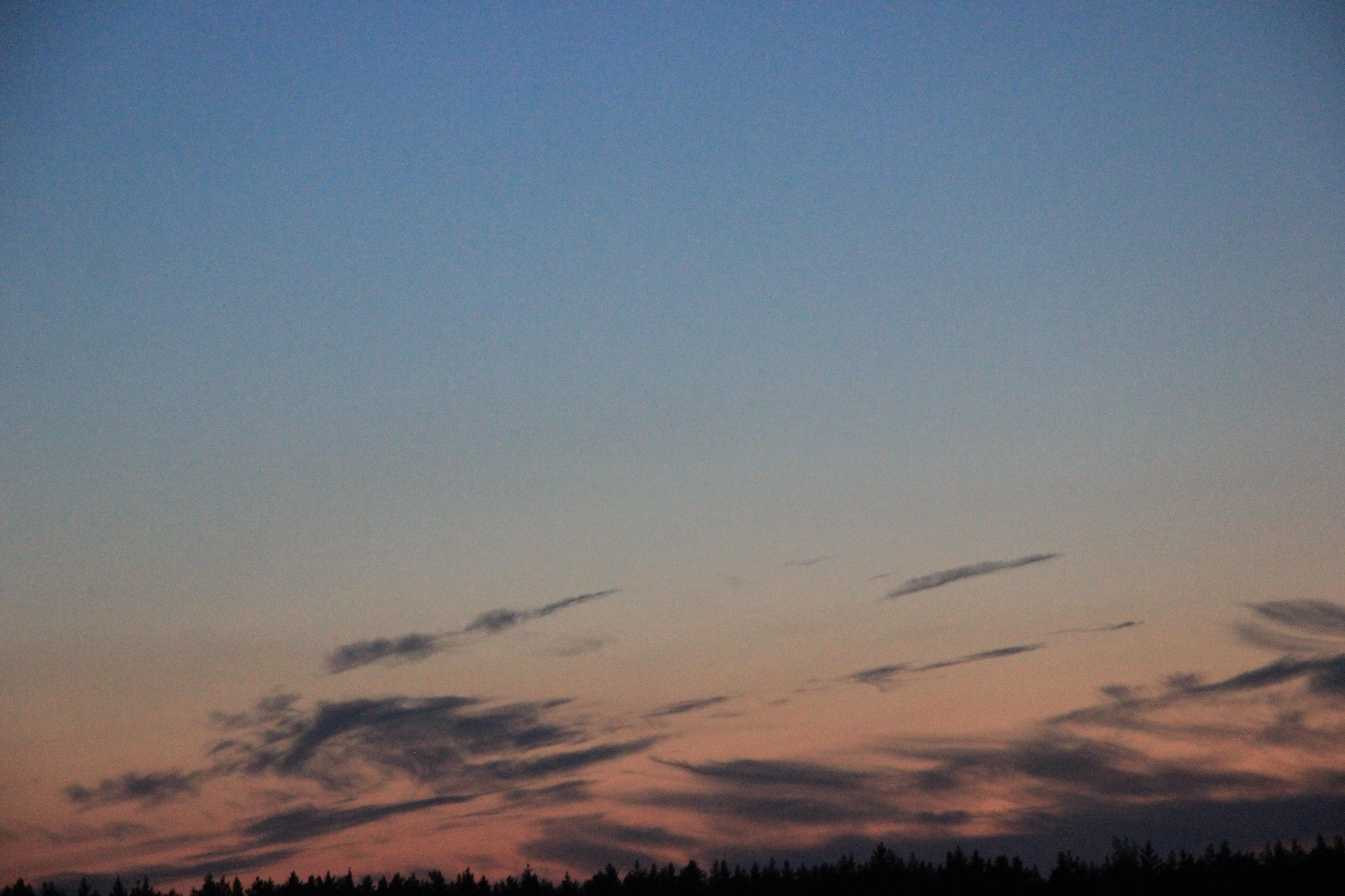 розовое небо заката (10)