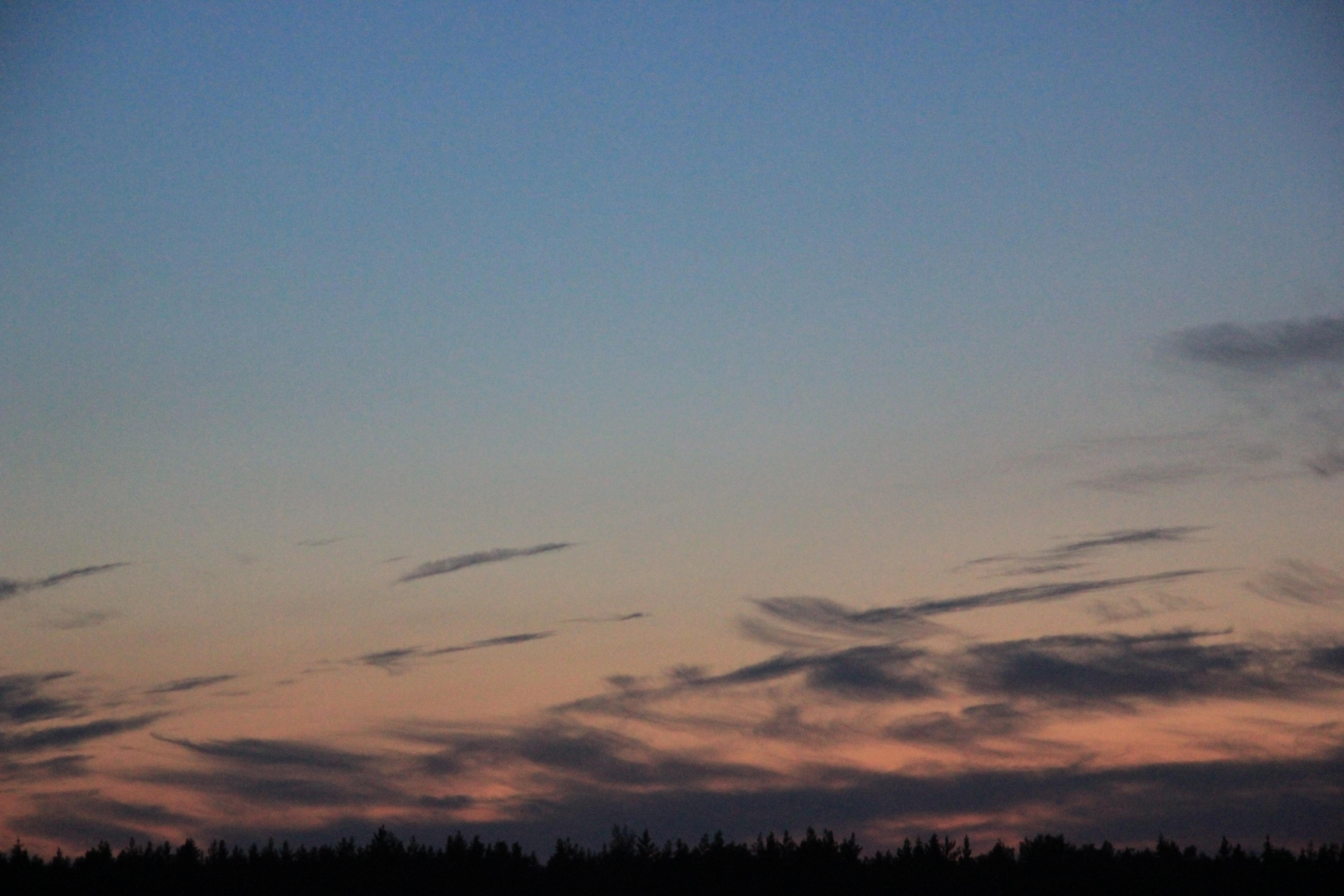 розовое небо заката (11)
