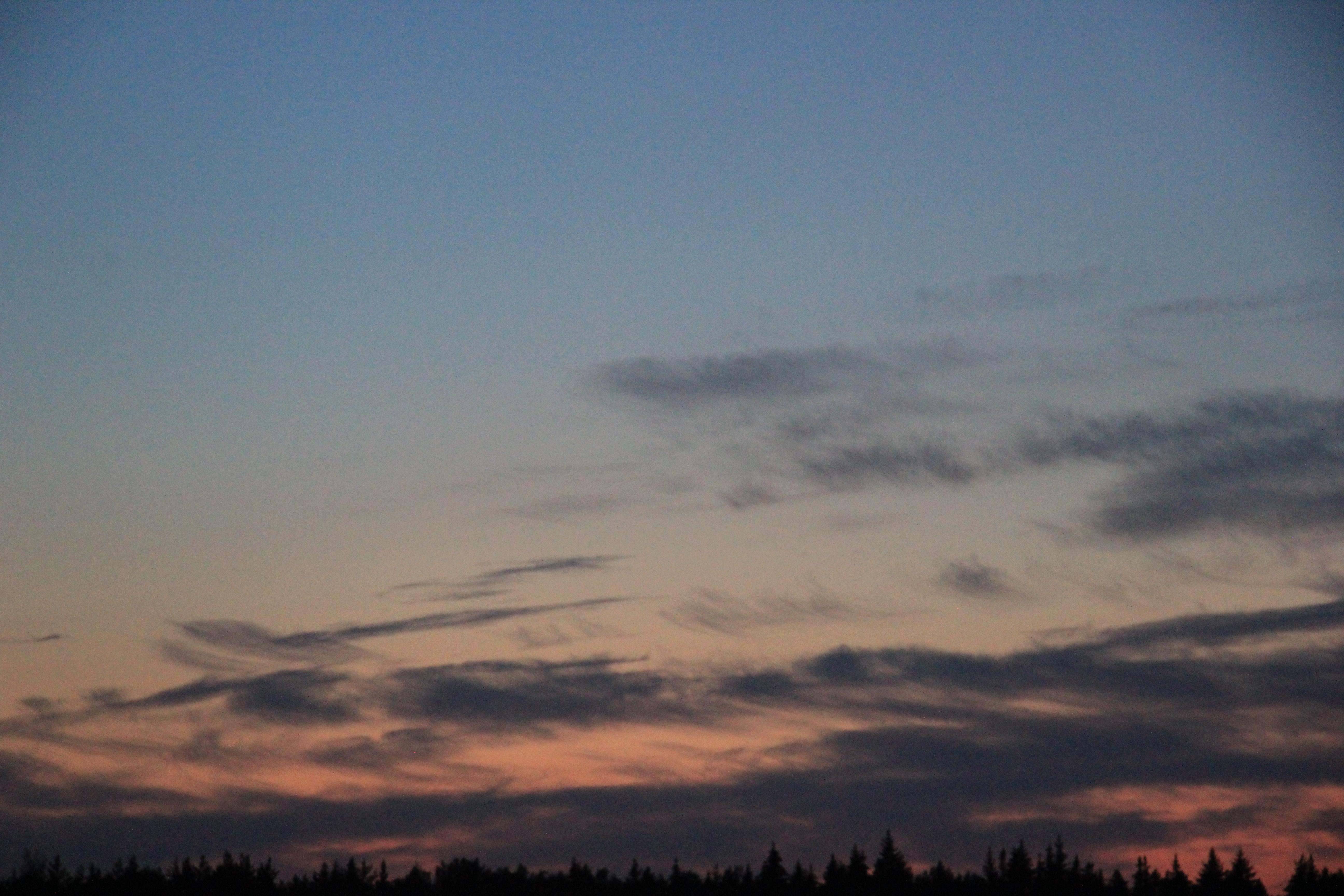 розовое небо заката (12)
