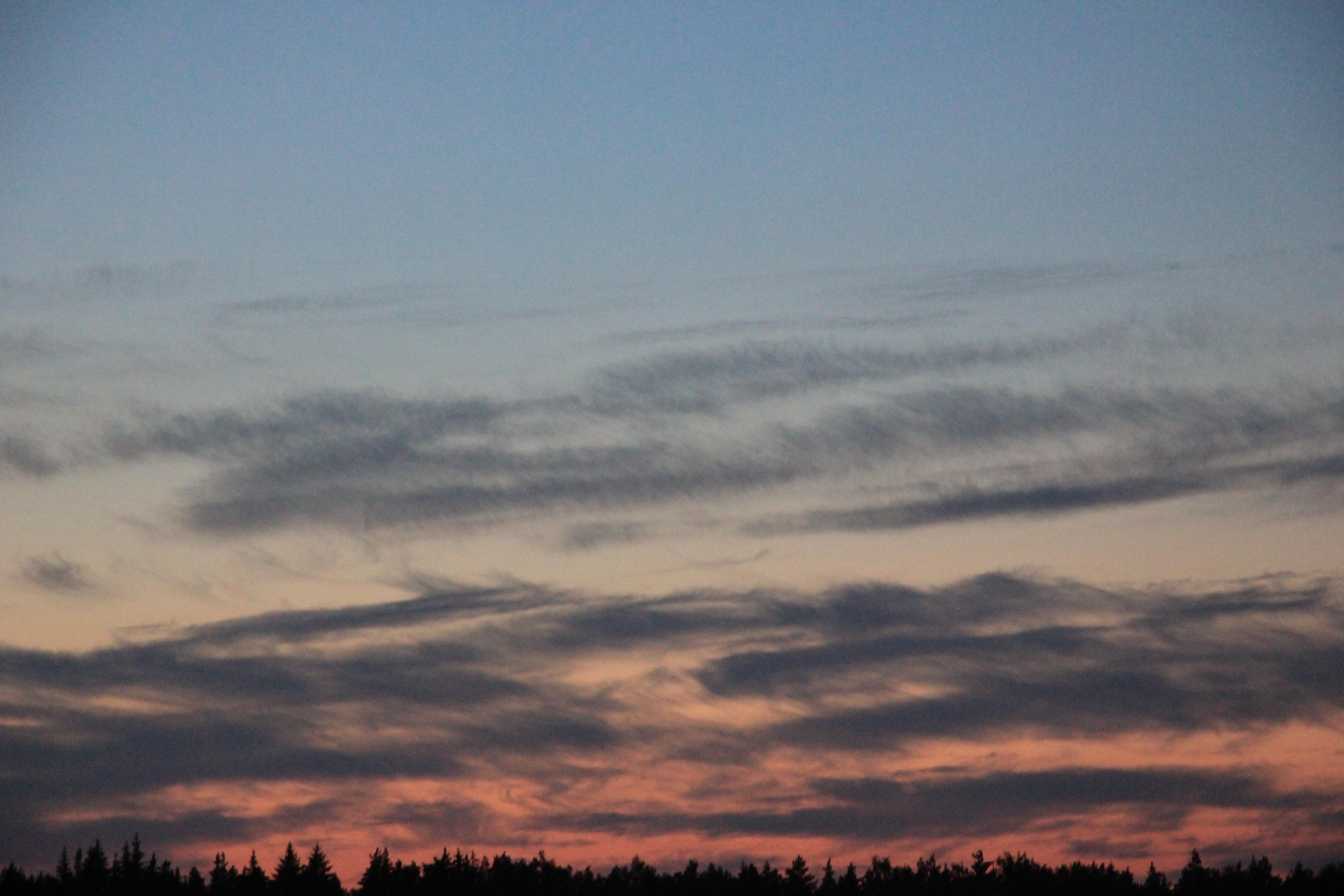 розовое небо заката (13)