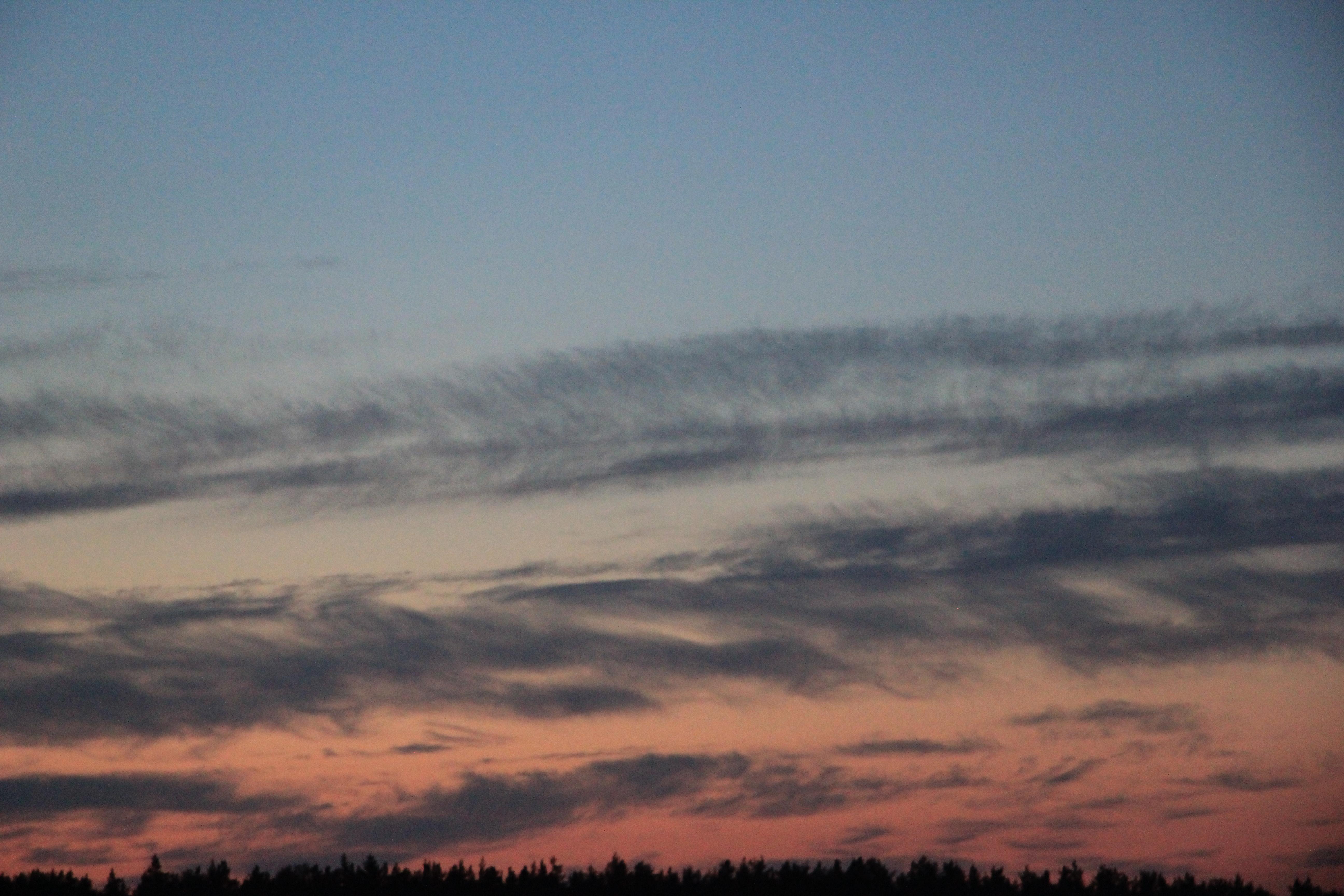 розовое небо заката (14)