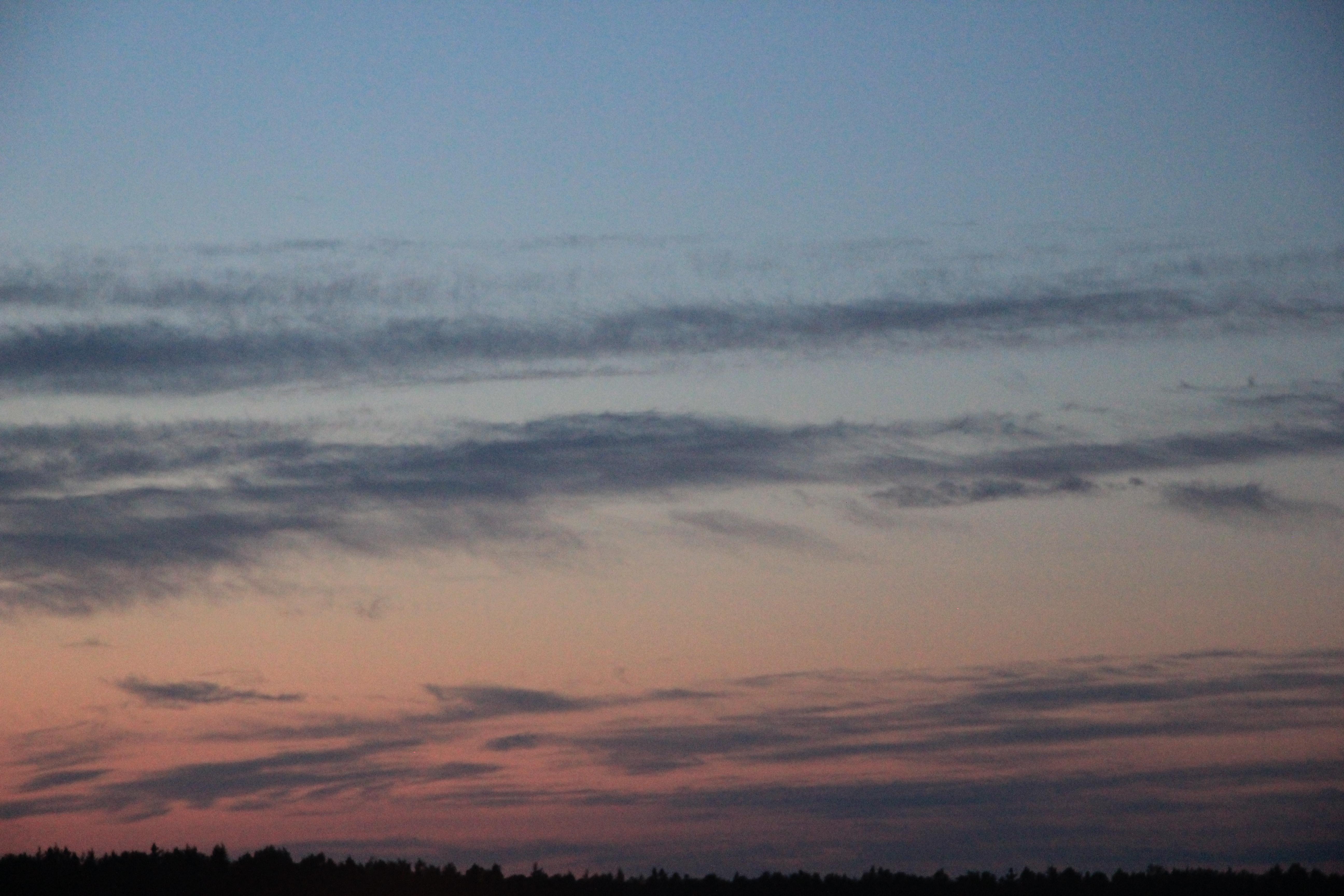 розовое небо заката (15)