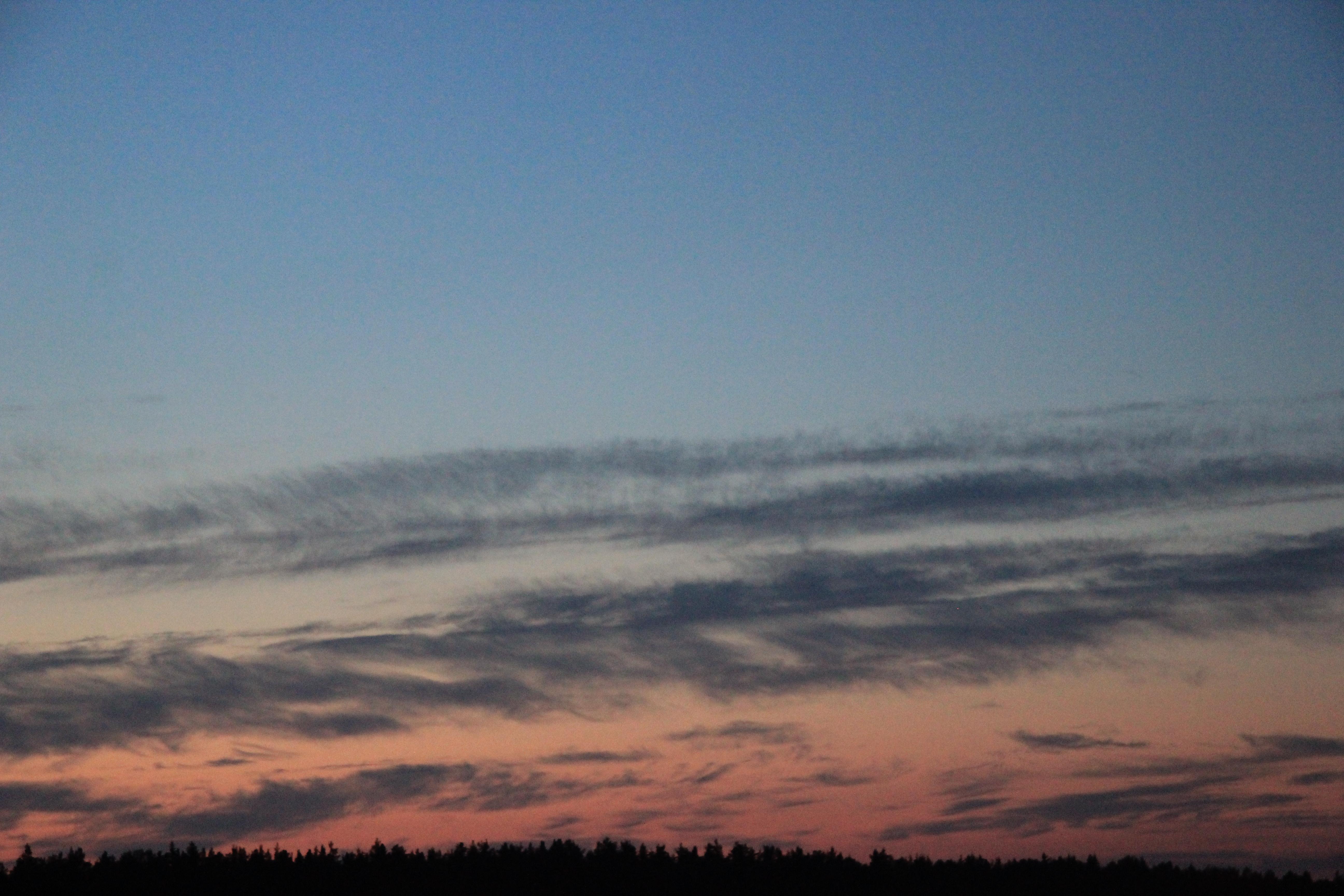 розовое небо заката (16)