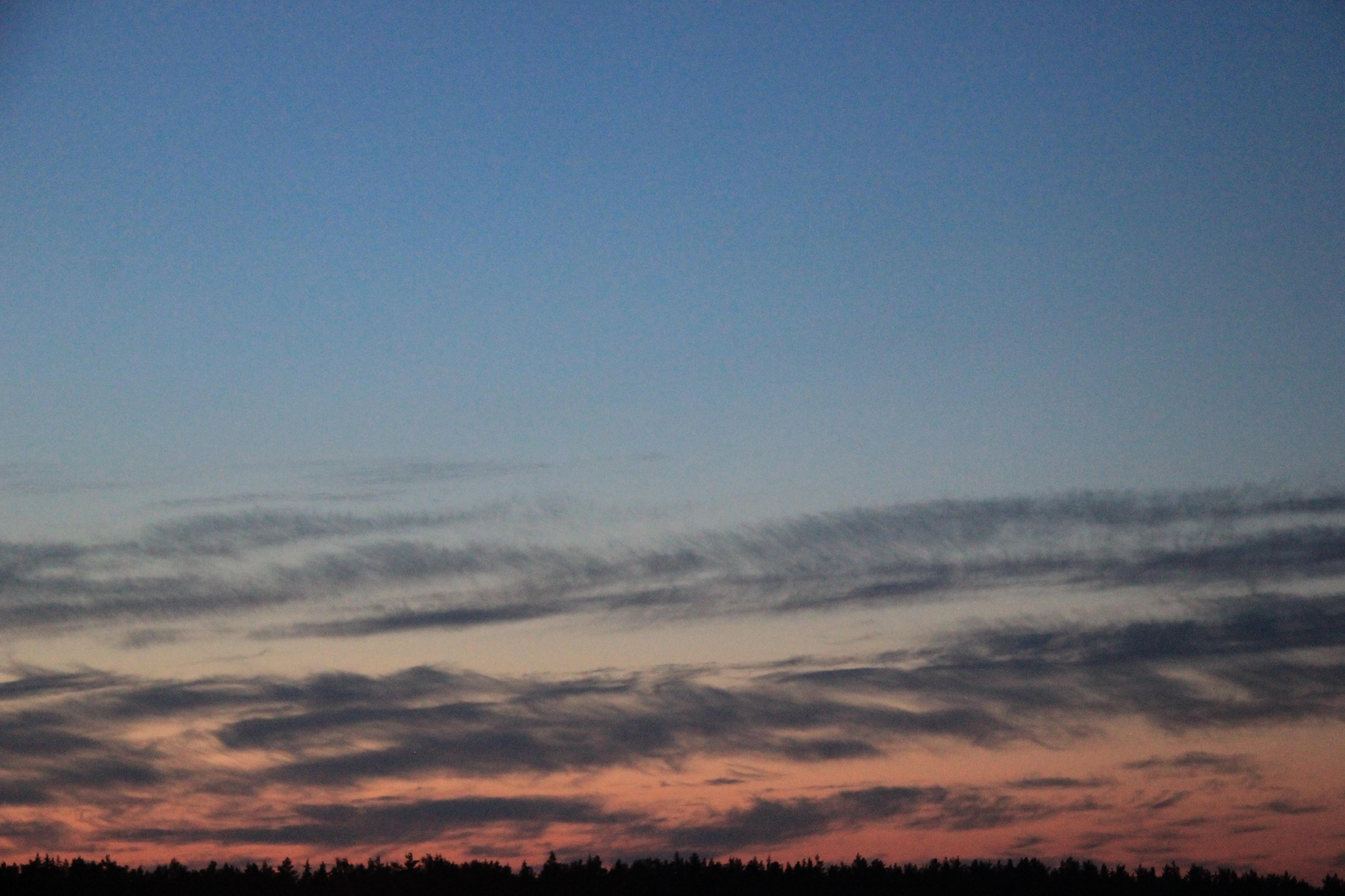 розовое небо заката (17)