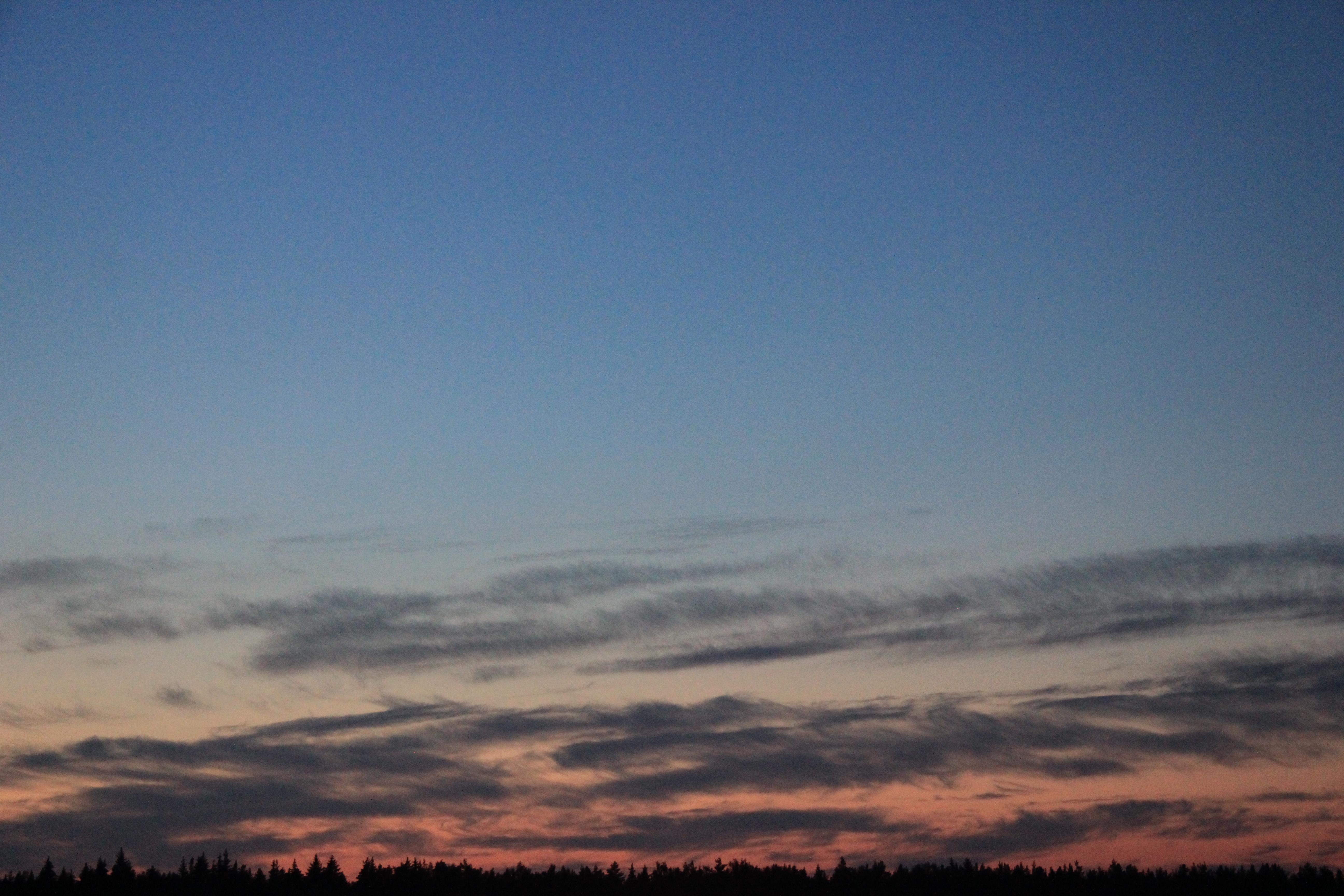 розовое небо заката (18)