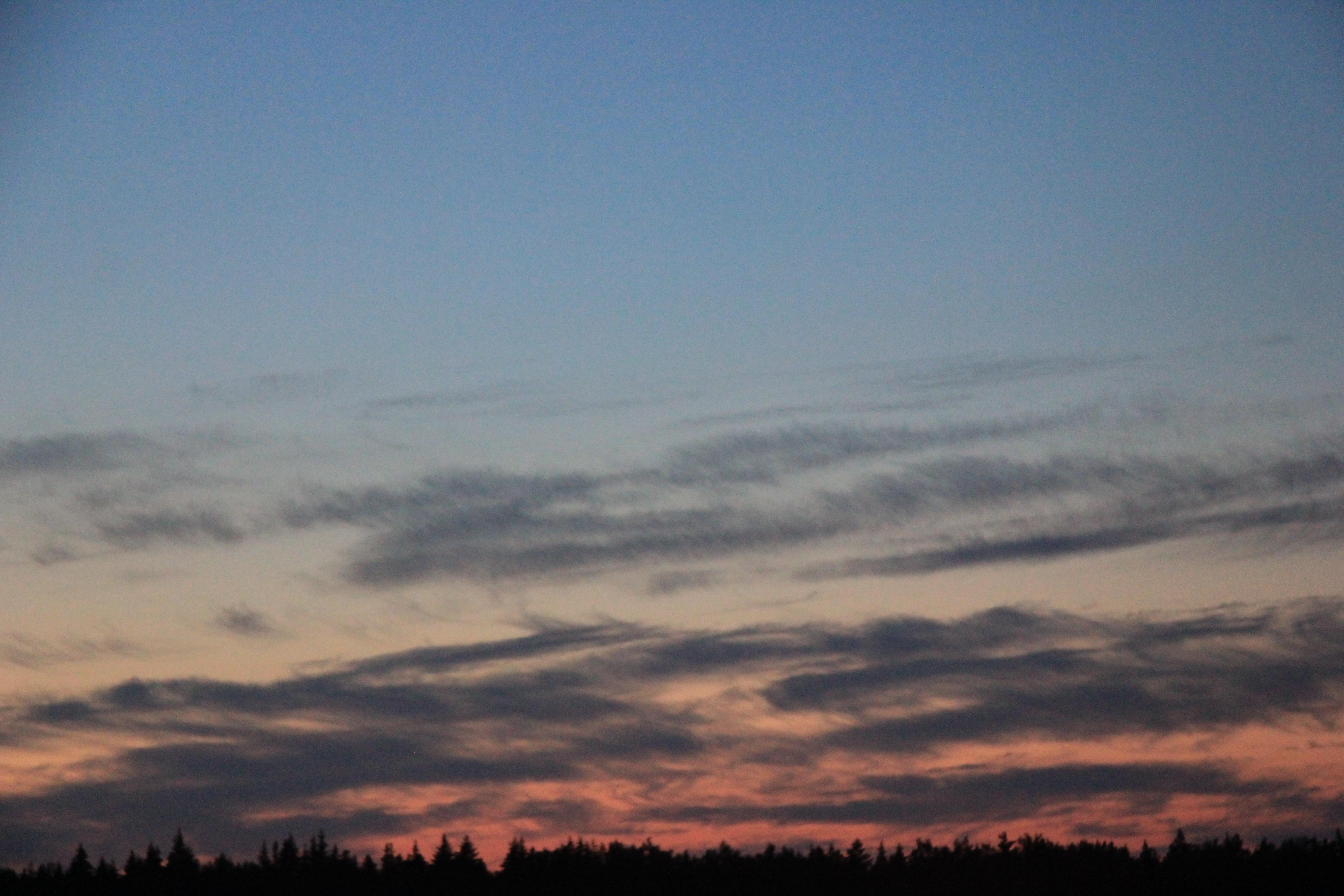 розовое небо заката (19)