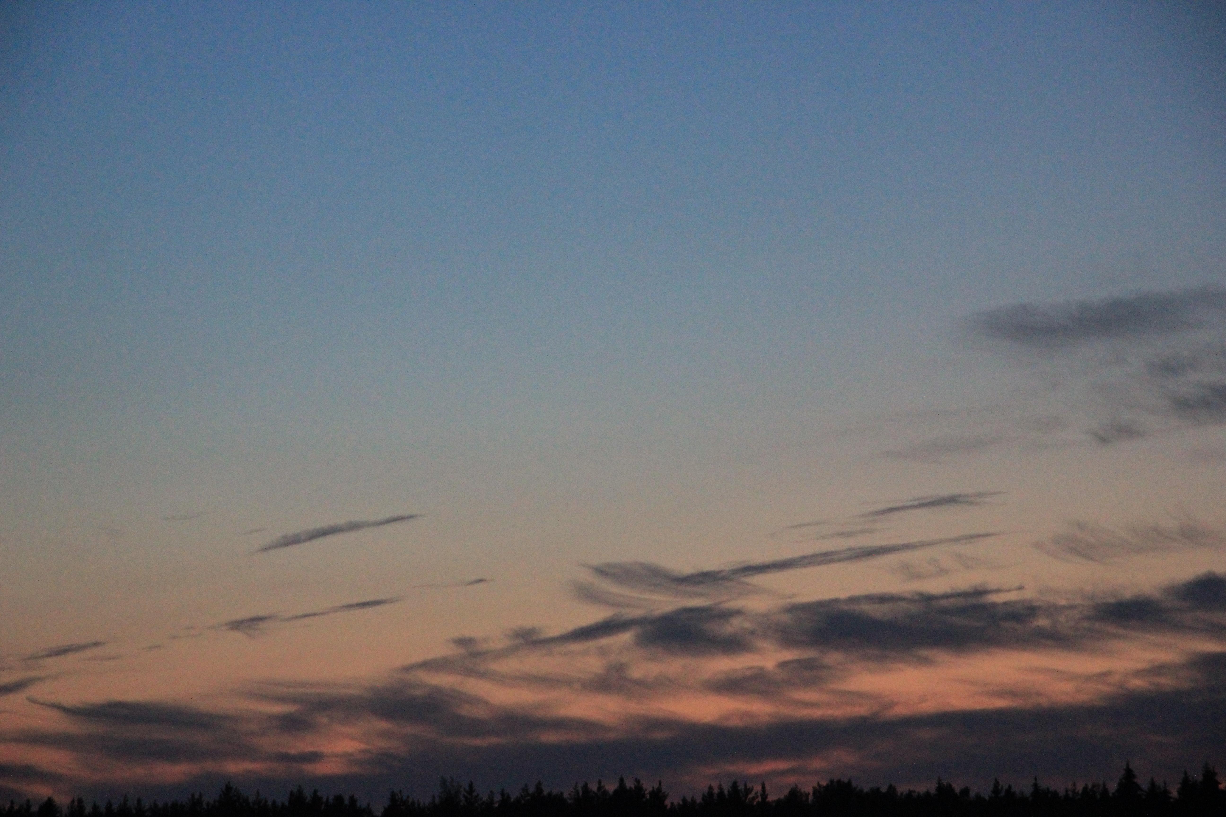розовое небо заката (2)