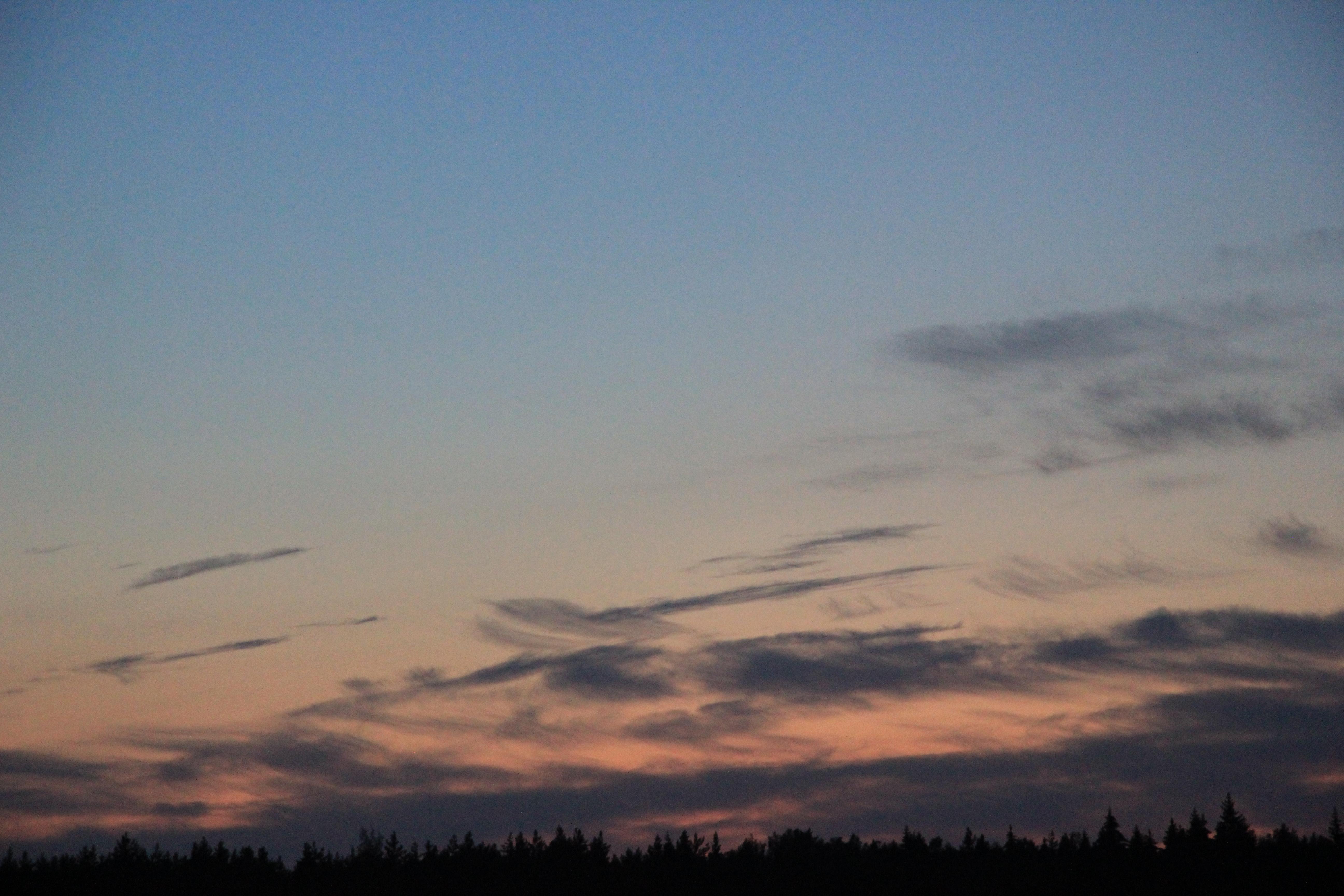 розовое небо заката (20)