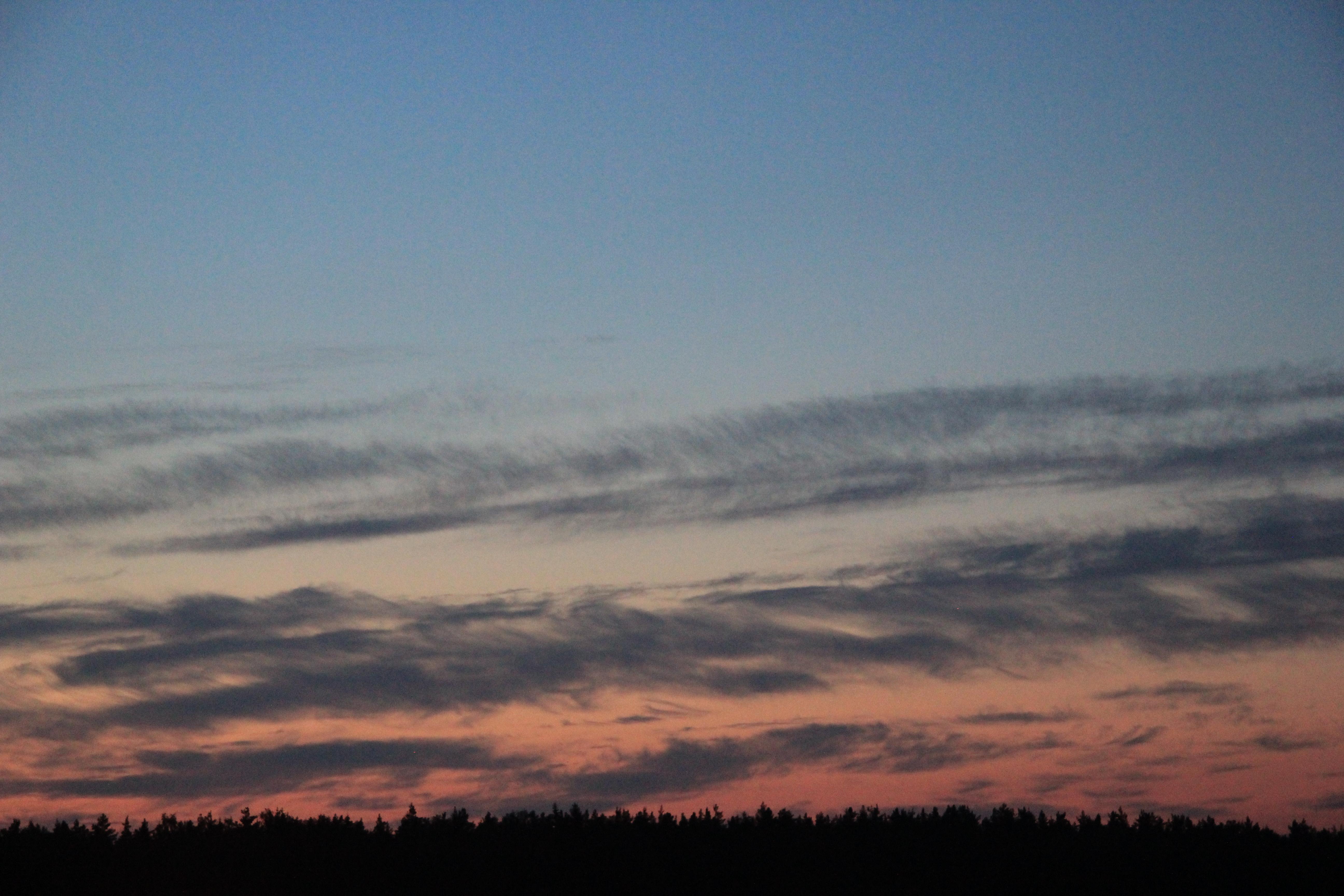 розовое небо заката (22)