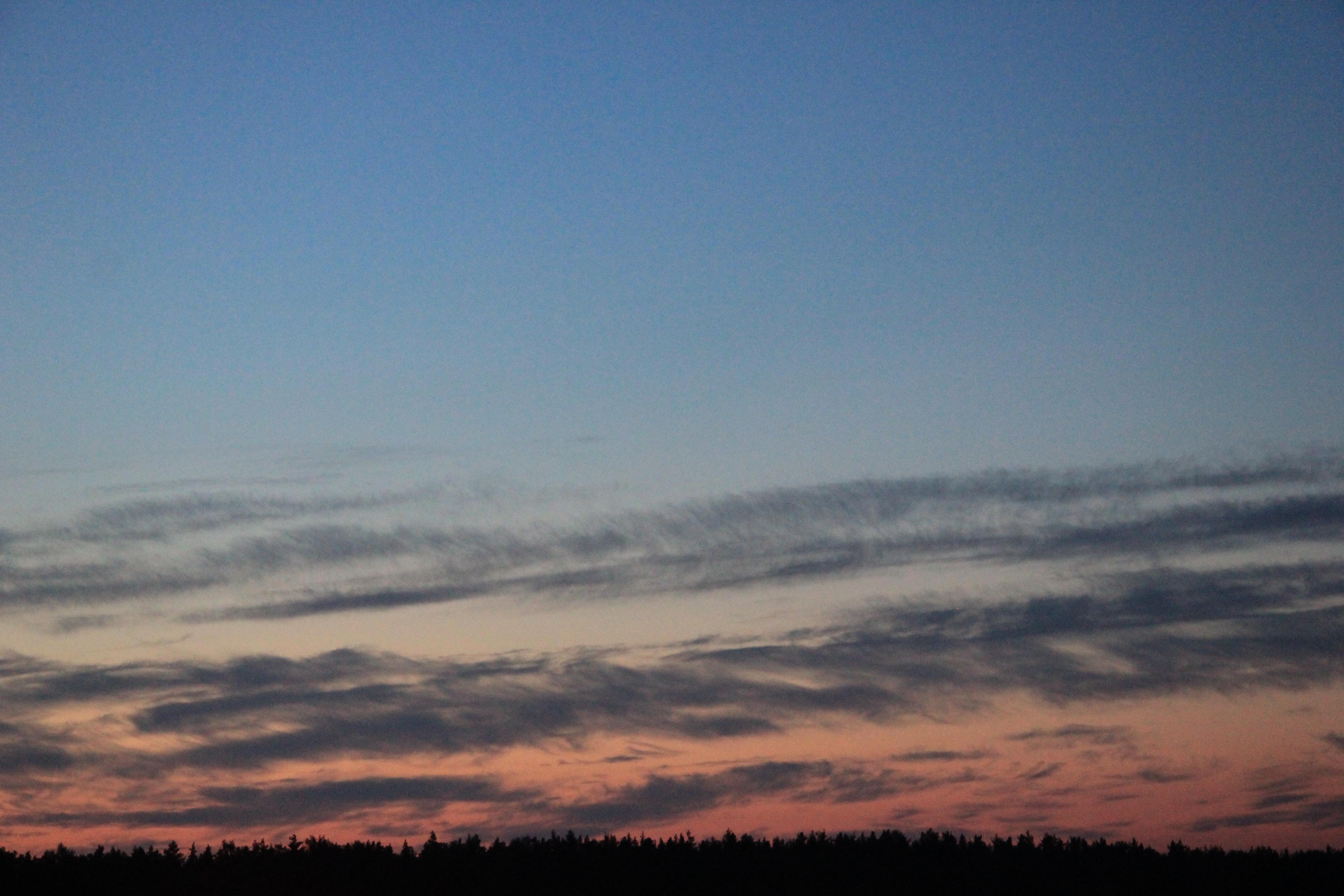 розовое небо заката (23)