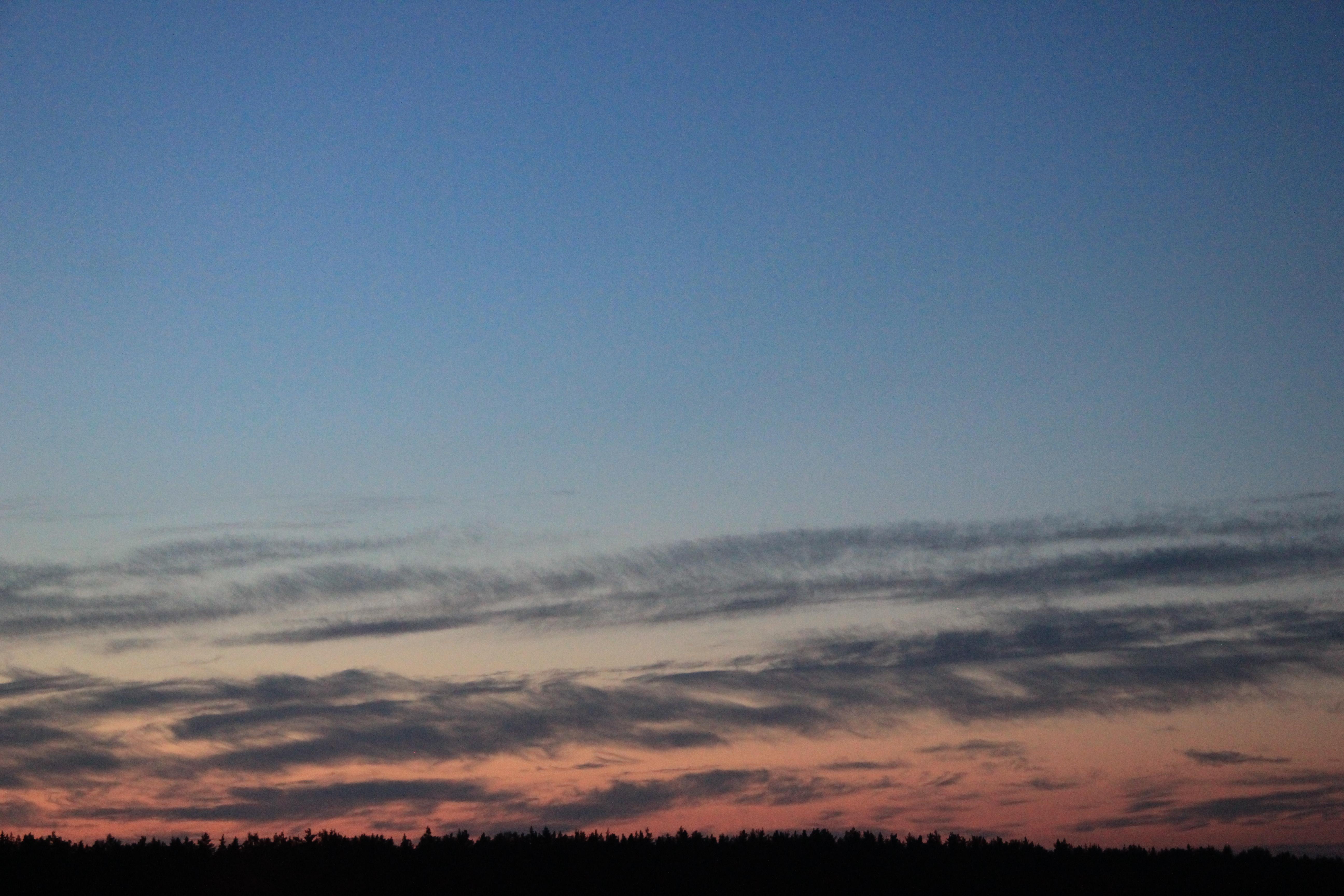розовое небо заката (24)