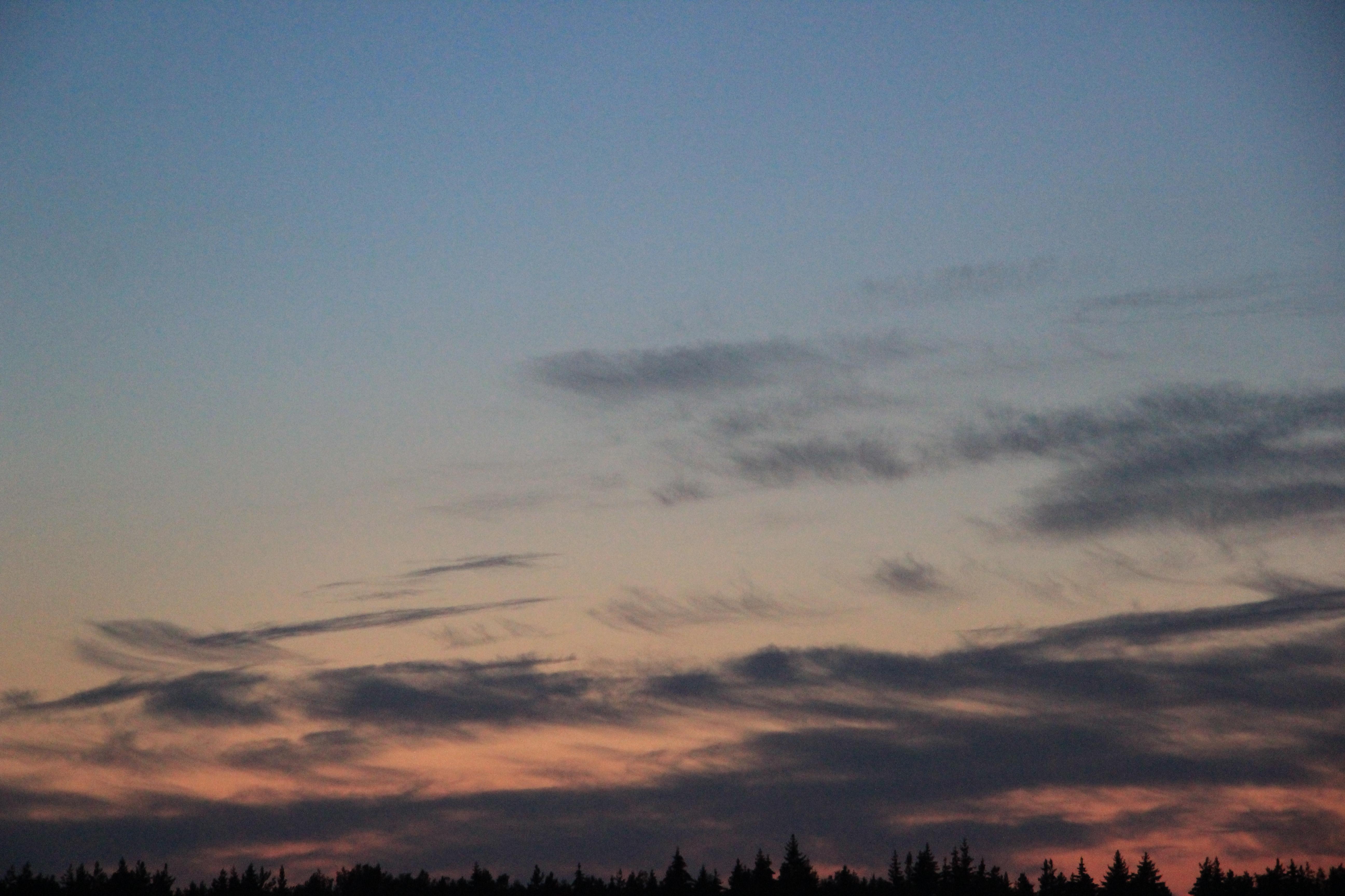 розовое небо заката (3)