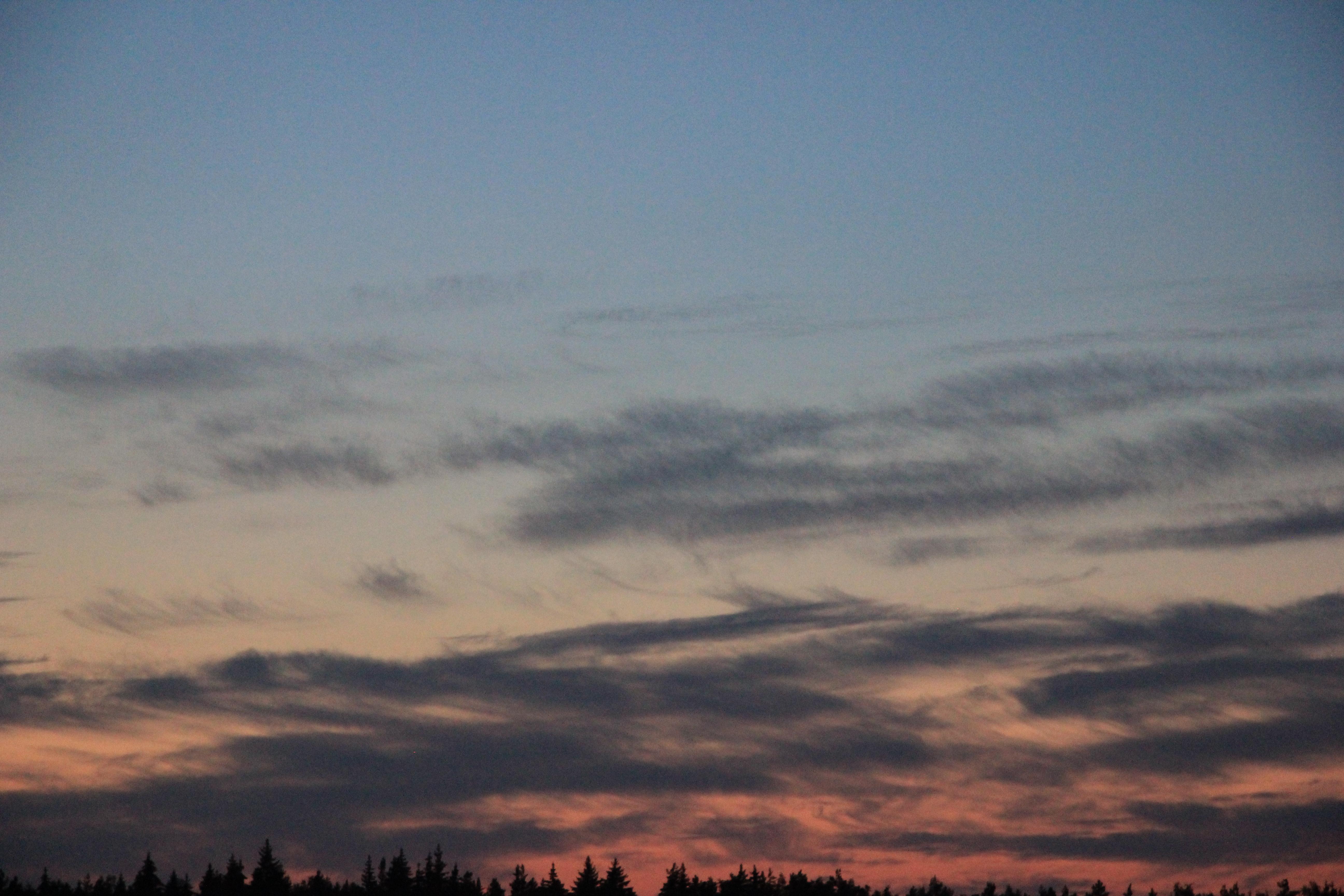 розовое небо заката (4)