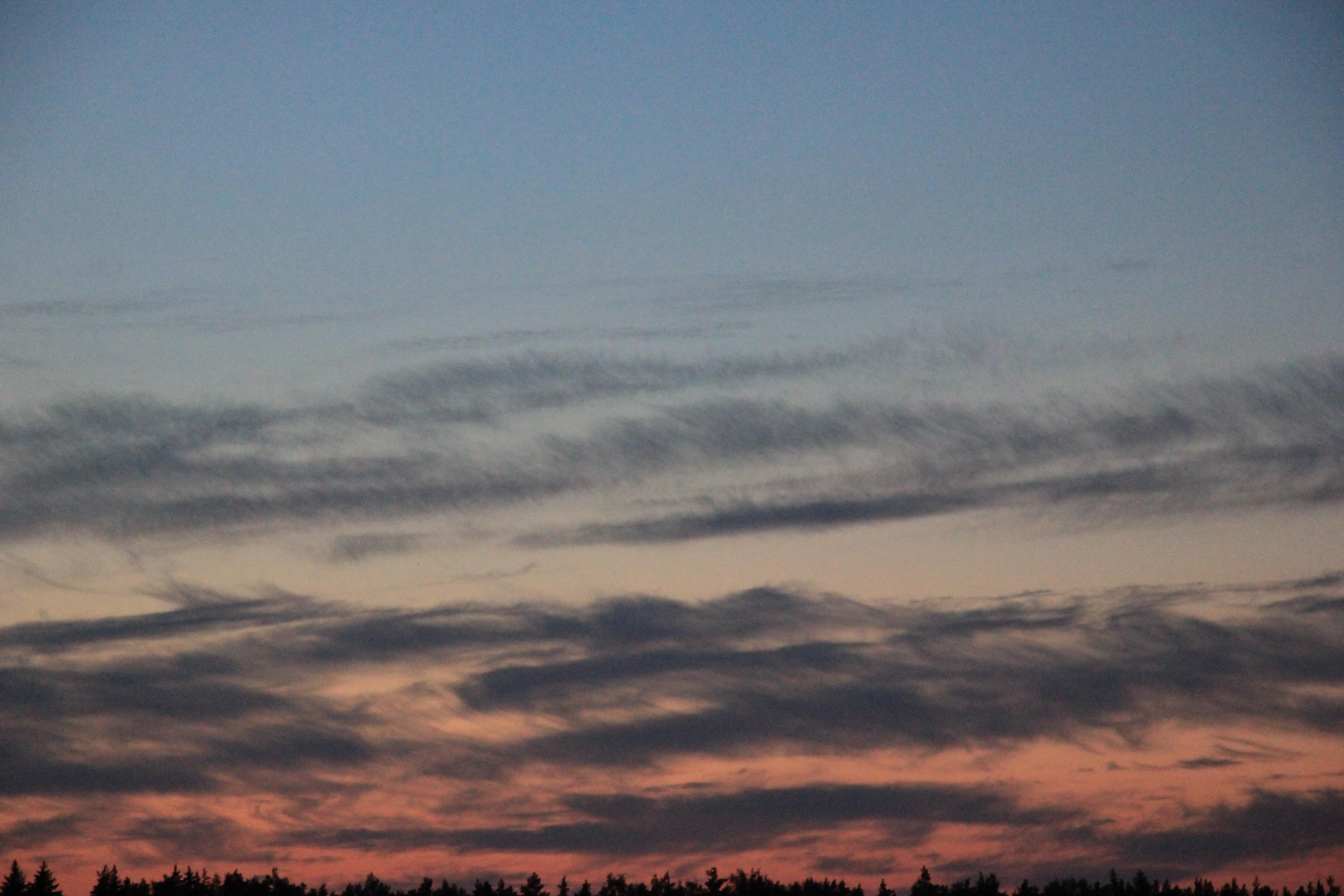 розовое небо заката (5)